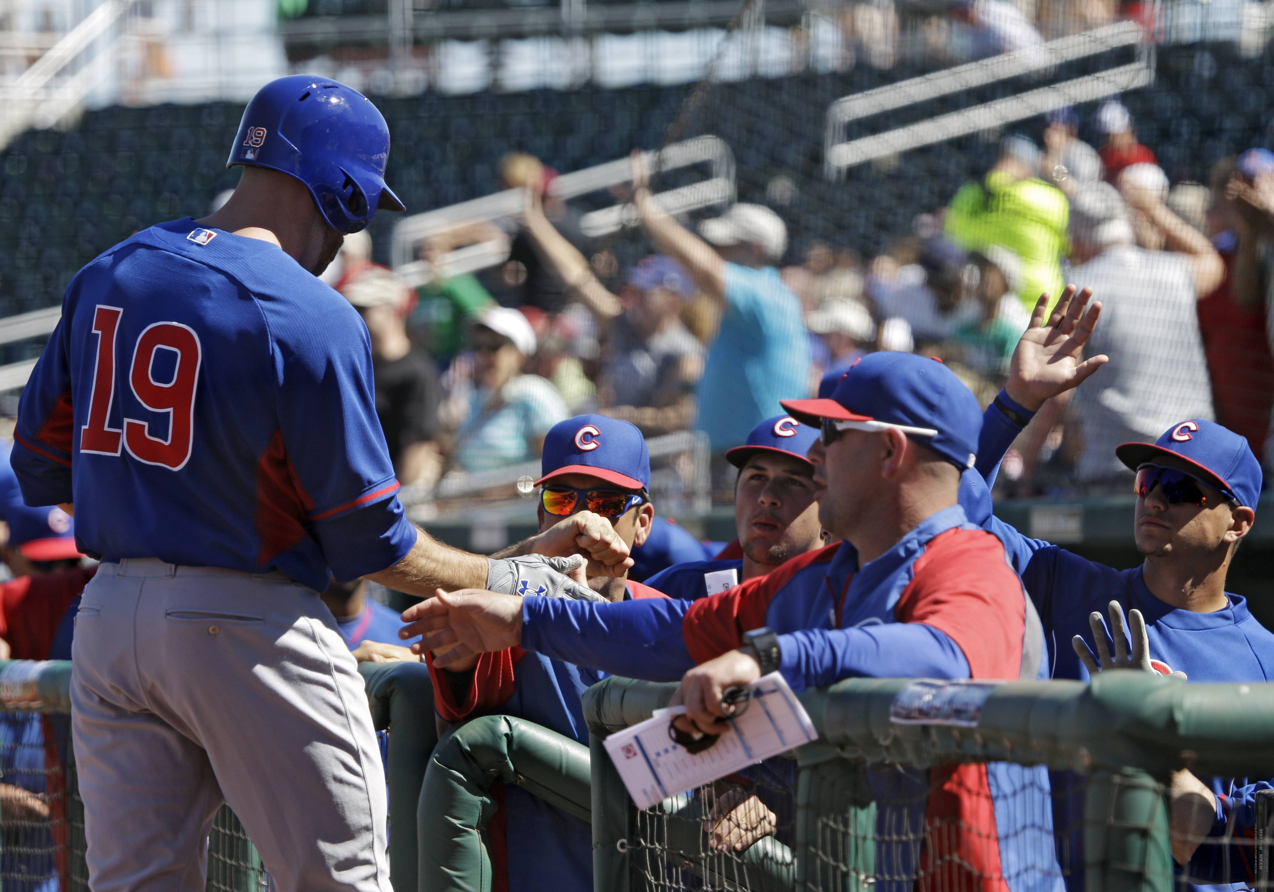 Chicago Cubs' Nate Schierholtz (19) is greeted at the dugout after his two-run home run against the Cincinnati Reds in a spring training exhibition baseball game Saturday, March 8, 2014, in Goodyear, Ariz.