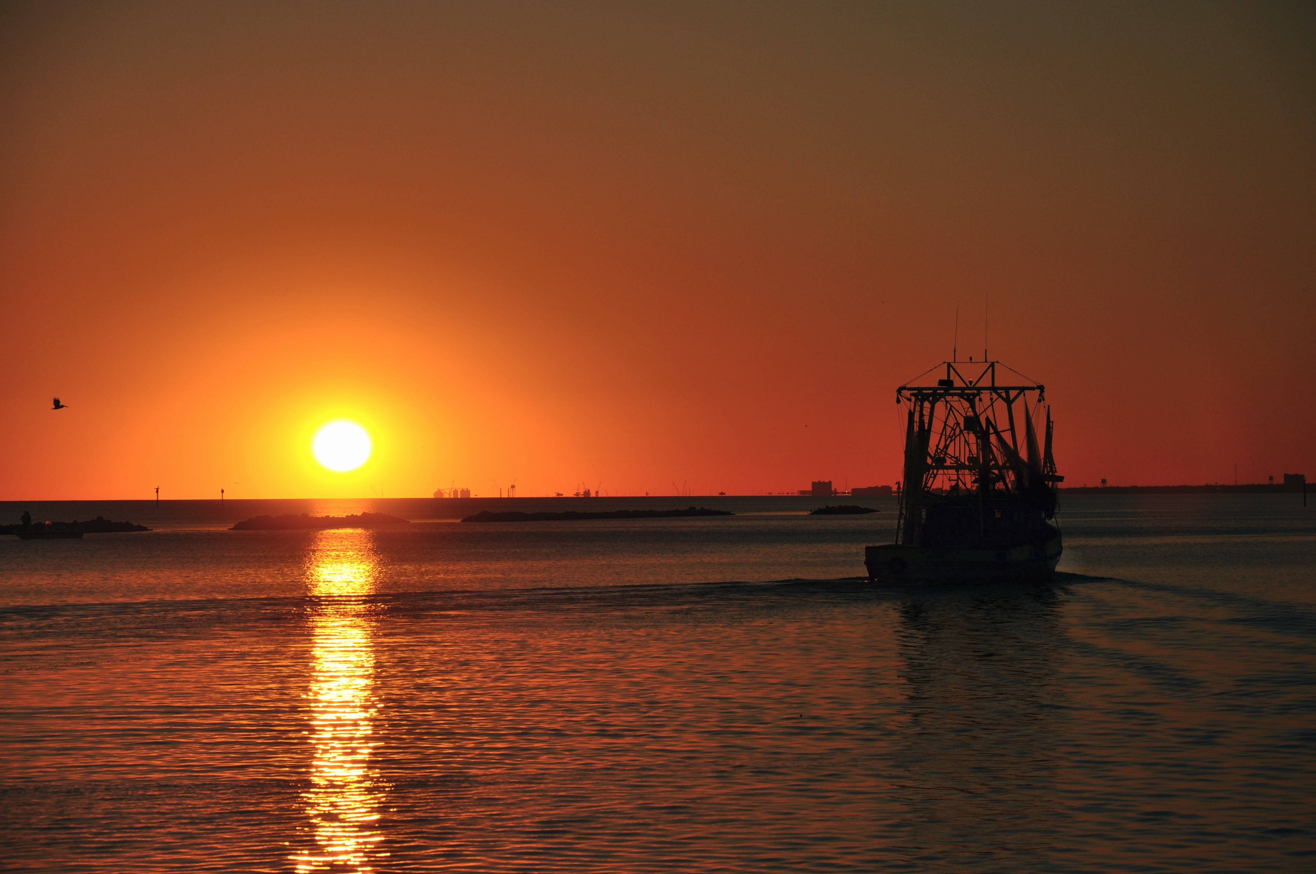 Shrimp boats depart Biloxi for a night of shrimping in the Gulf of Mexico.