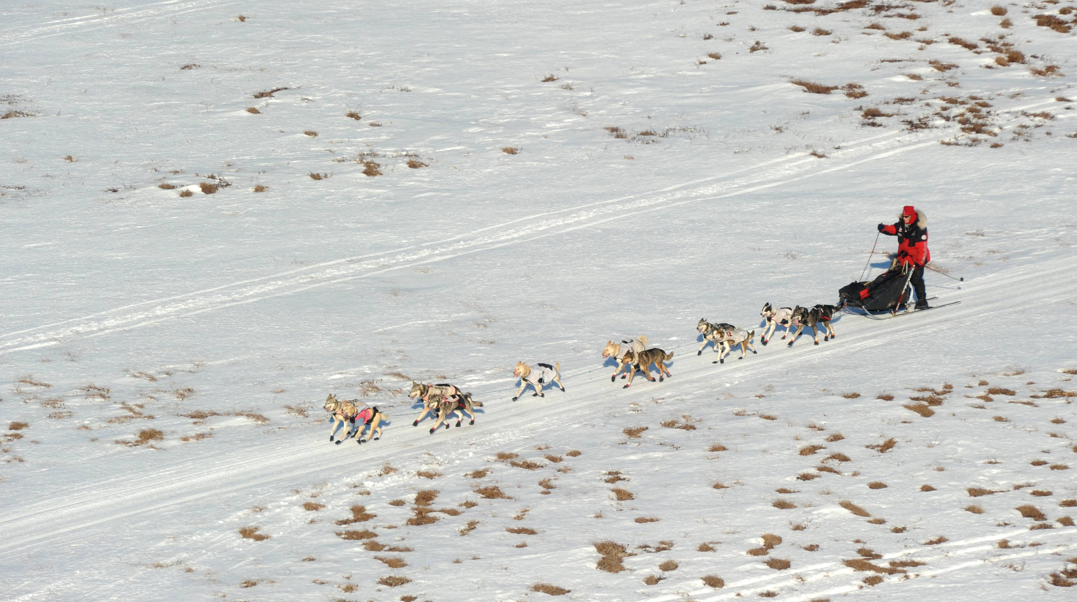 Aliy Zirkle mushes her dog team between the checkpoints of Kaltag and Unalakleet during the 2014 Iditarod Trail Sled Dog Race on Saturday.