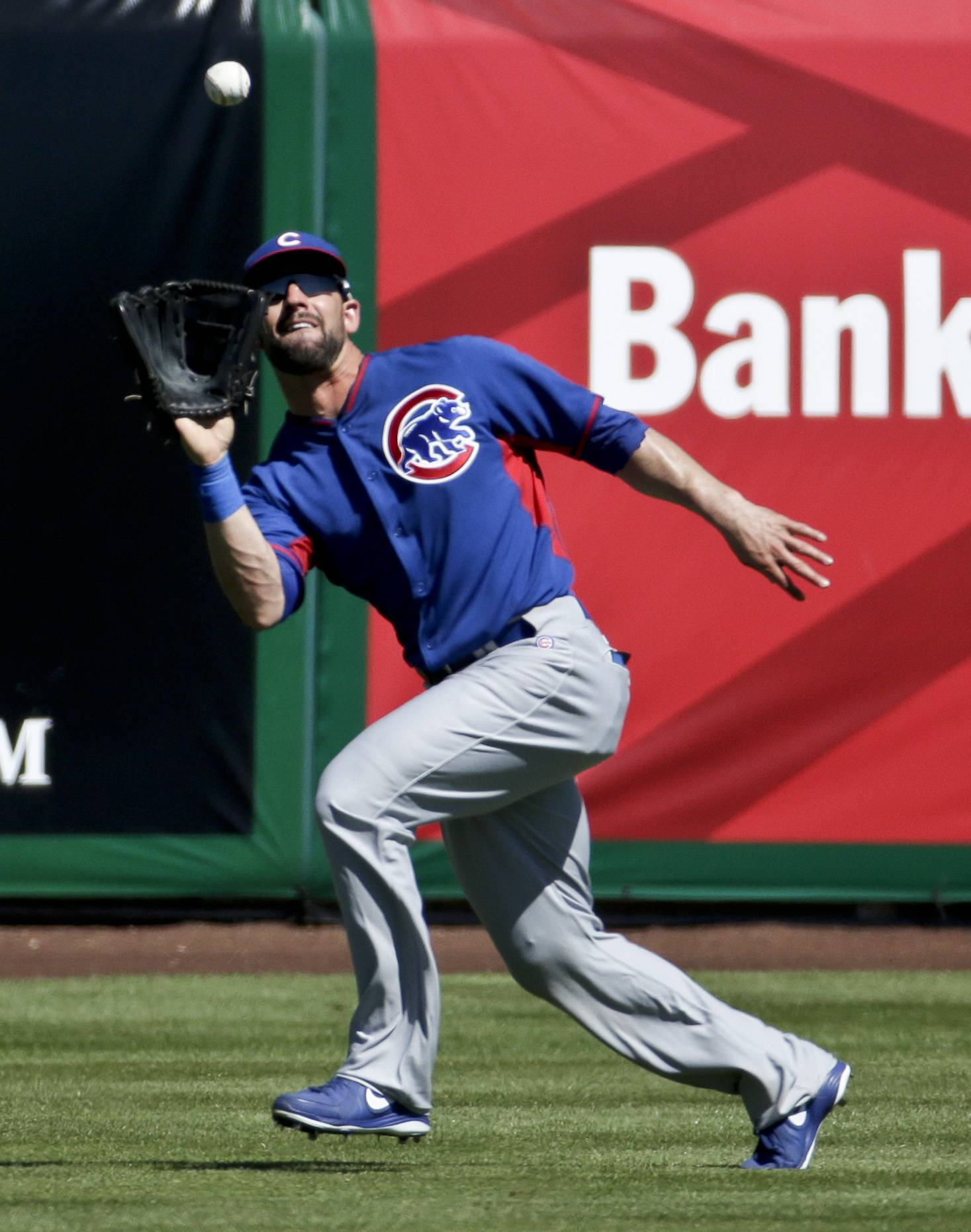 Chicago Cubs center fielder Ryan Kalish catches a fly ball hit by San Francisco Giants' Brandon Belt during the first inning of a spring exhibition baseball game Monday in Scottsdale, Ariz.