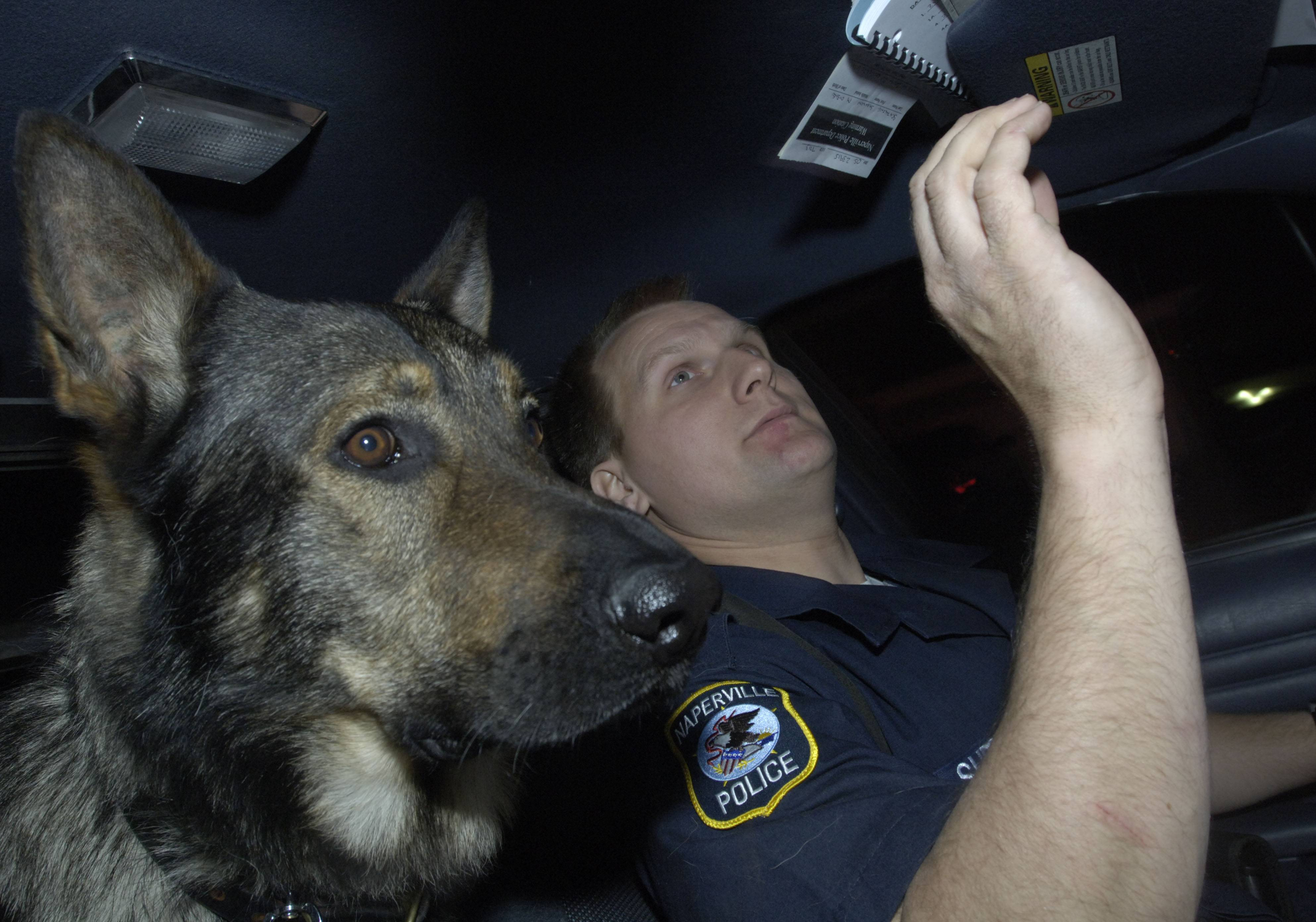 Naperville police officer Chris Sherwin works a patrol shift in 2005 with his K-9 Sabek, a German shepherd who was his partner for nine years.