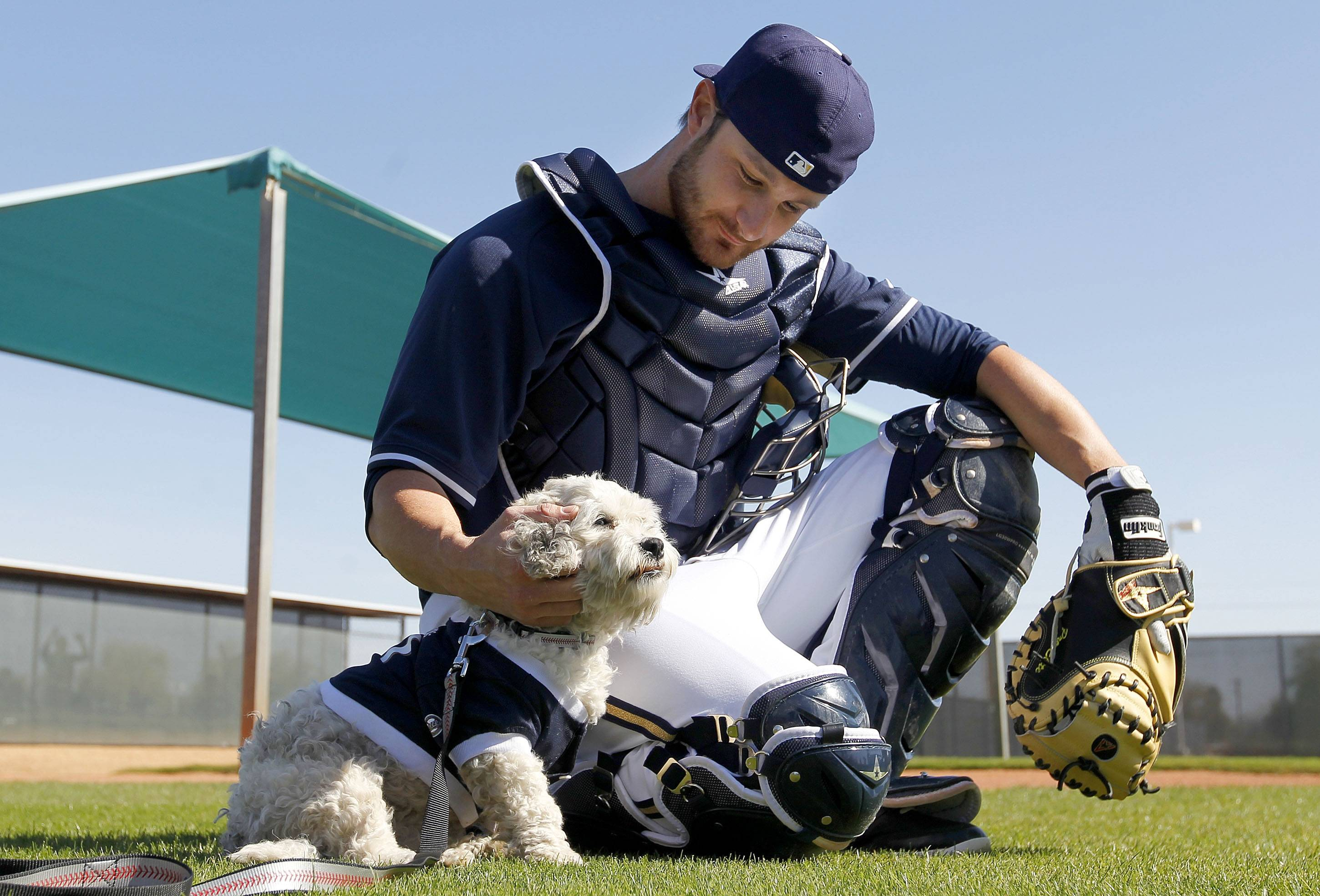 Milwaukee Brewers catcher Jonathan Lucroy pets Hank the dog during practice last month in Phoenix.