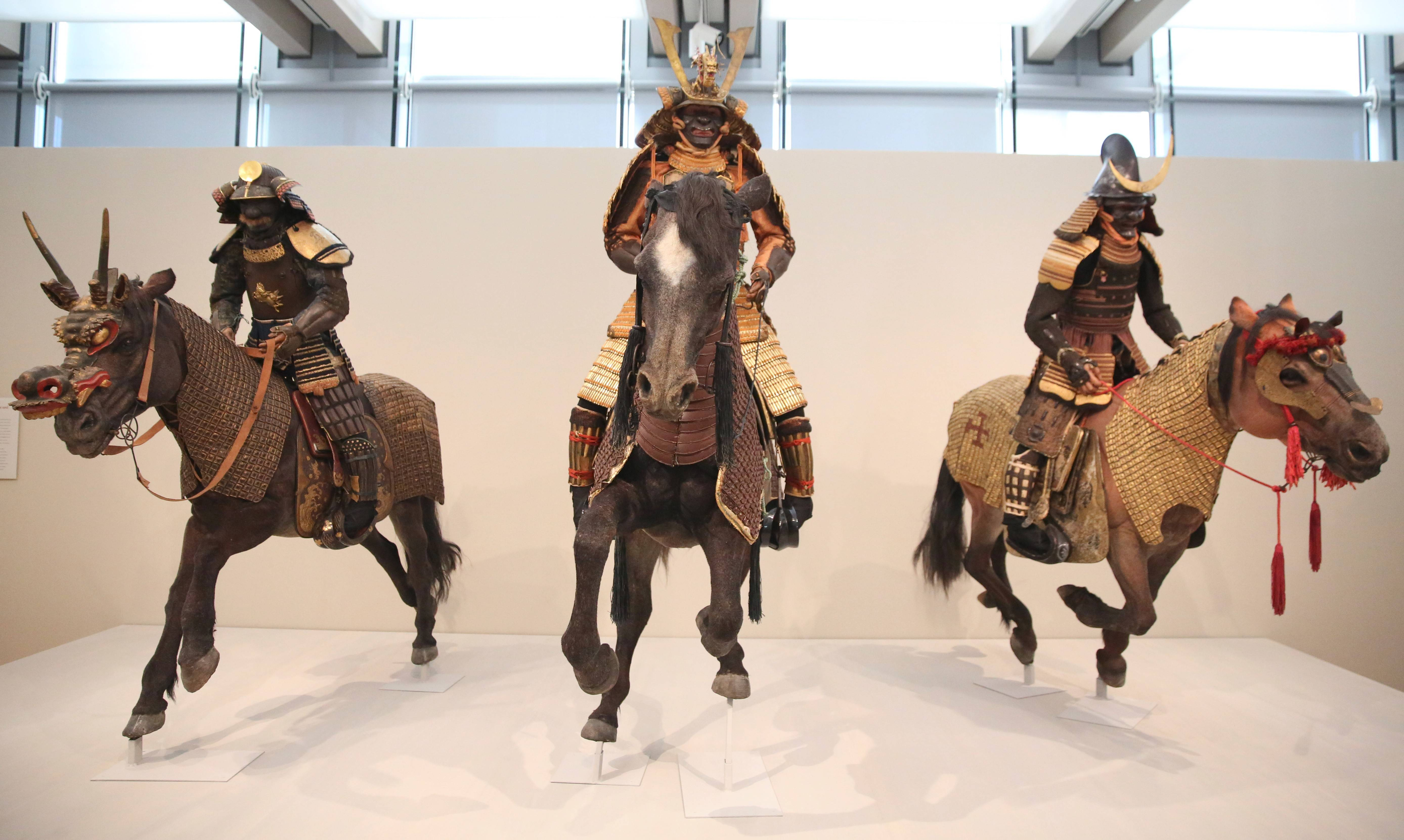 Full suits of armor for Samurai and their horses are on display at the Kimbell Art Museum in Fort Worth, Texas.
