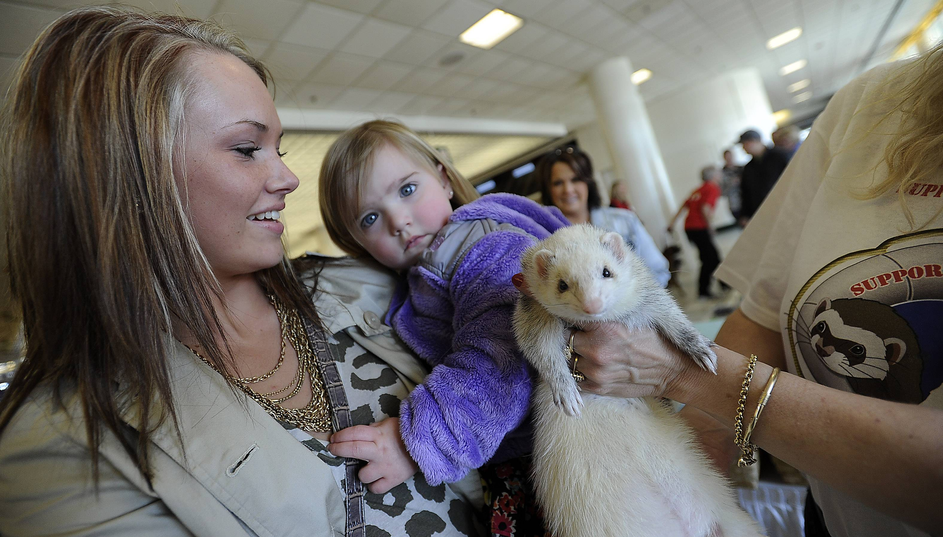 Chloe Janich and her daughter Ella, 2, of Milwaukee, Wis., check out the ferret Meeko on Friday at the Chicagoland Family Pet Expo at Arlington Park.