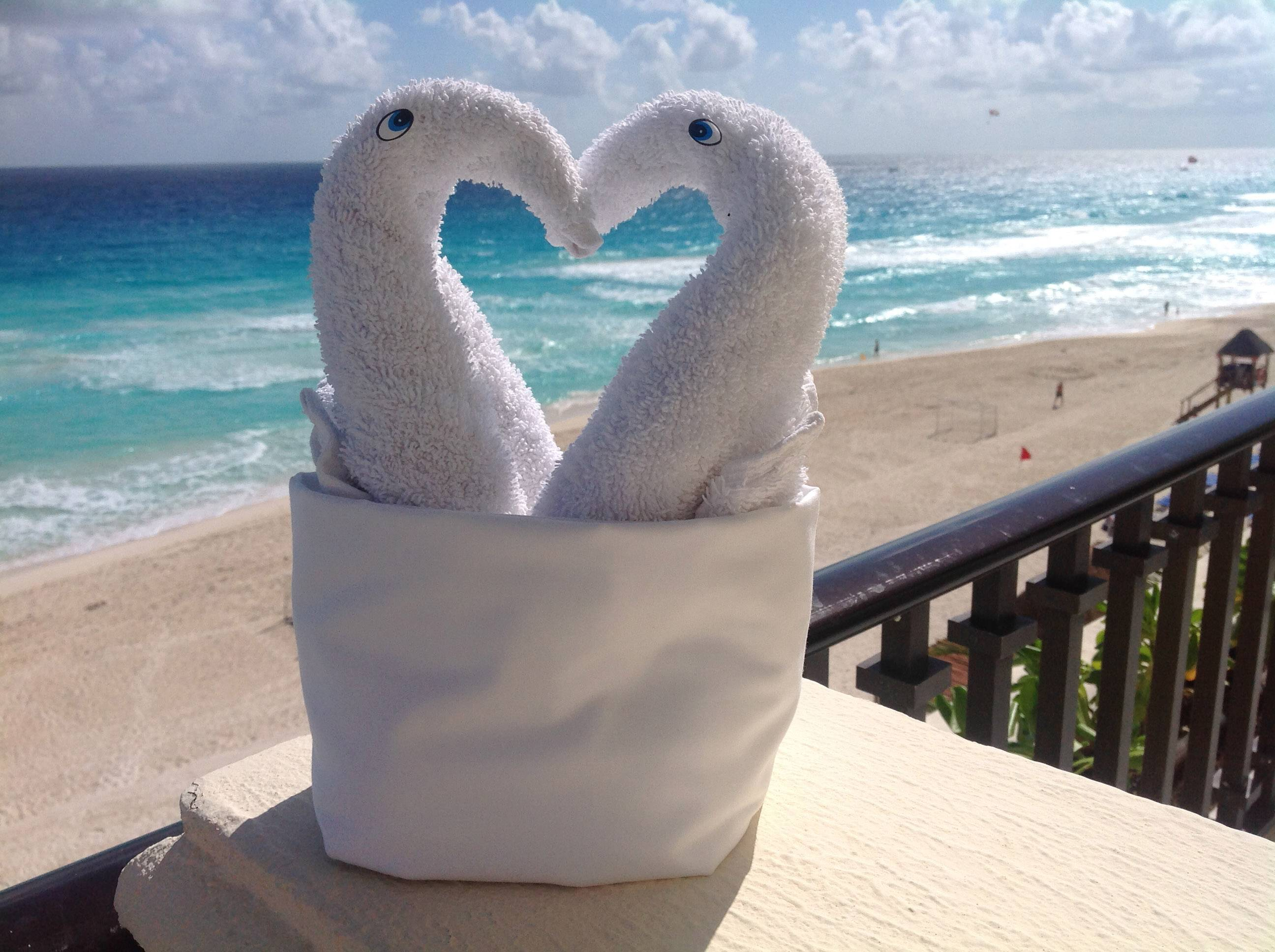 I took this photo from my Cancun hotel balcony in early December. The hotel cleaning staff had made these cute birds from wash cloths, I just took them outside for some fresh air.
