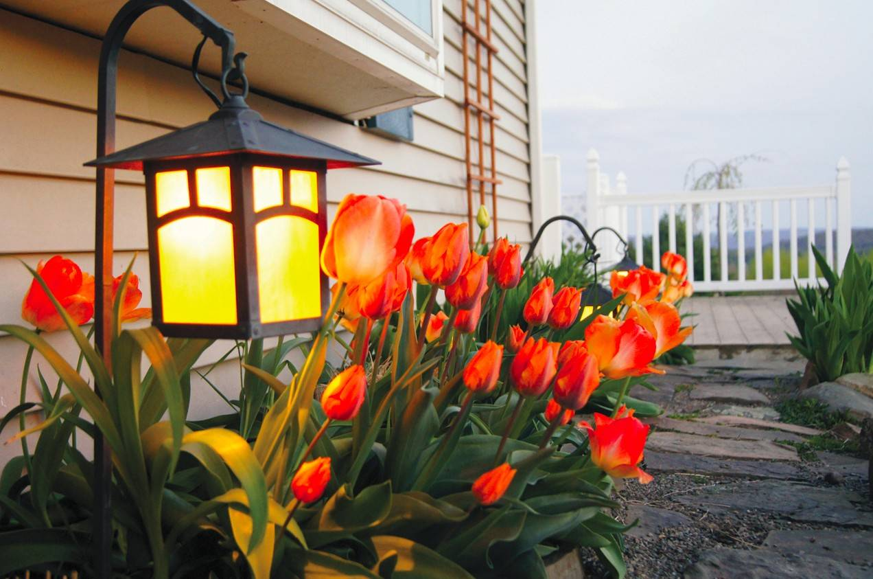 Outdoor lighting can play up the more decorative features of a yard, including flower beds.