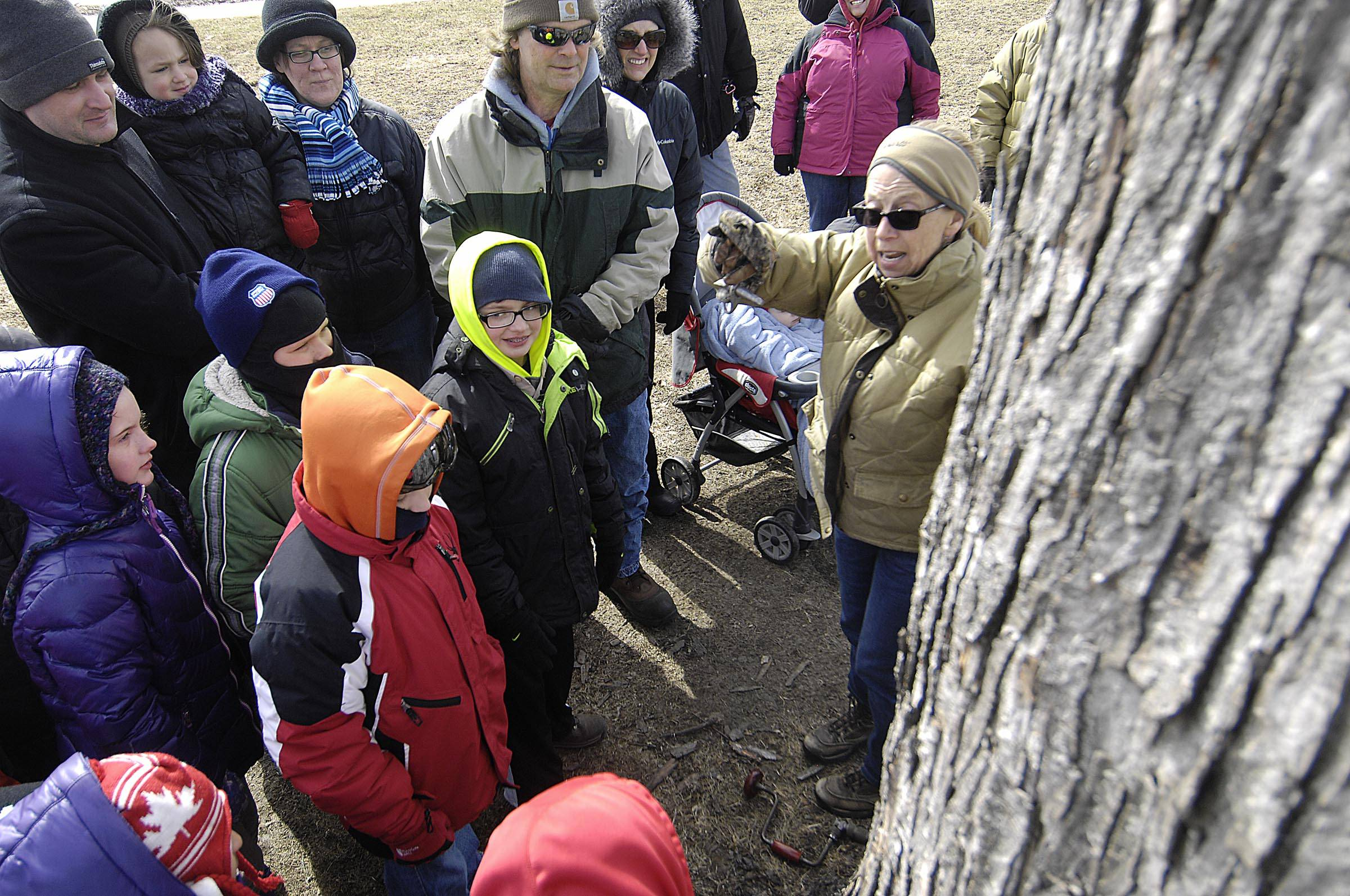 Naturalist Valerie Blaine of the Forest Preserve District of Kane County holds a metal spile Sunday as she demonstrates how to tap a tree for sap at Maple Sugaring Days in St. Charles.
