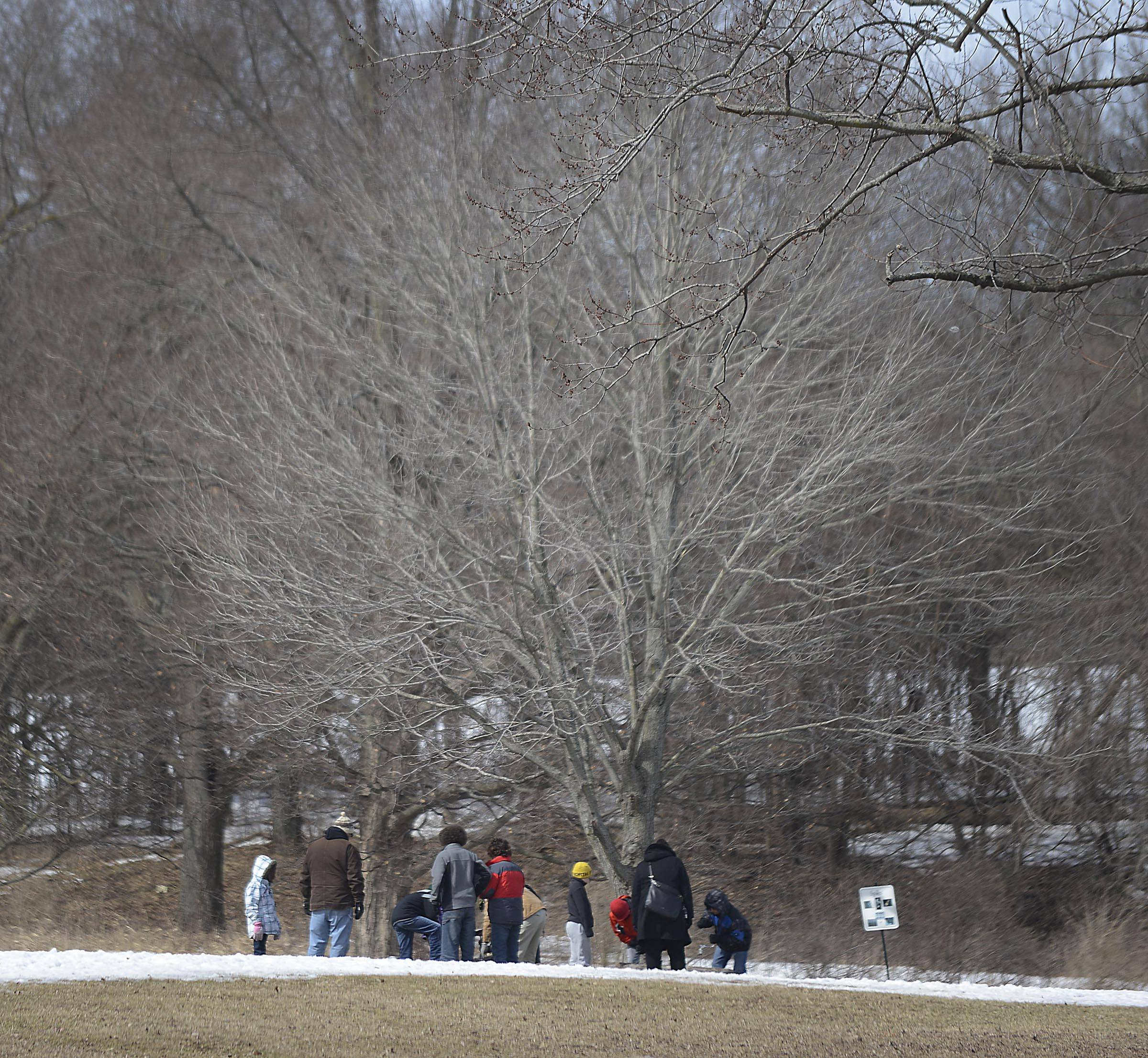 A group braves Sunday's chilly temperatures and wind chills to learn about how sap becomes syrup during Maple Sugaring Days at LeRoy Oakes Forest Preserve in St. Charles.