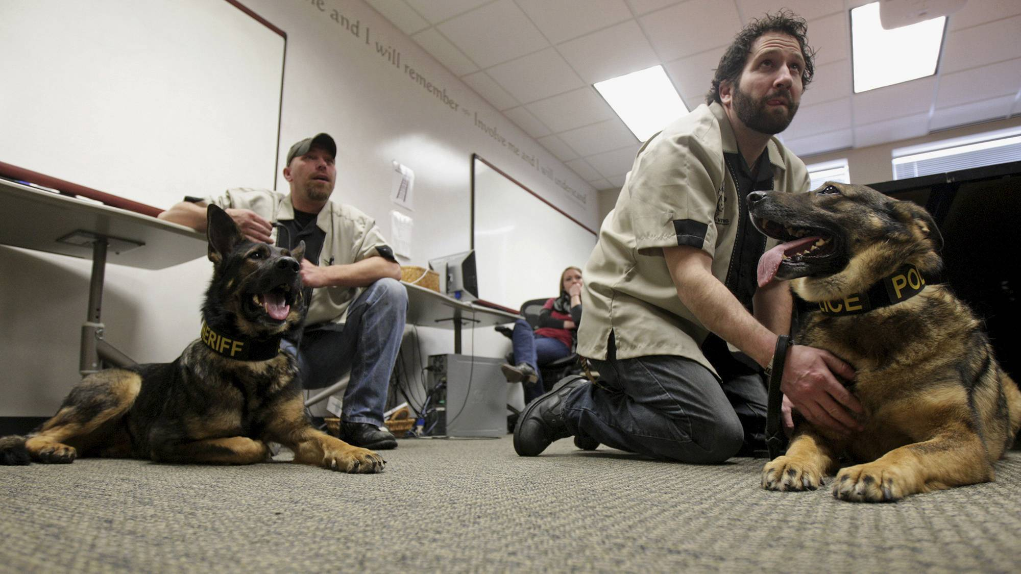 Laky, left, a retired Baltimore County Sheriff K-9, and Zander, a retired Massachusetts State Police K-9, relax with their respective handlers Dave Crawford and Kevin Finizio, both disabled Navy veterans, after a presentation given by Northern Illinois University students on the Save-A-Vet program in Dekalb.