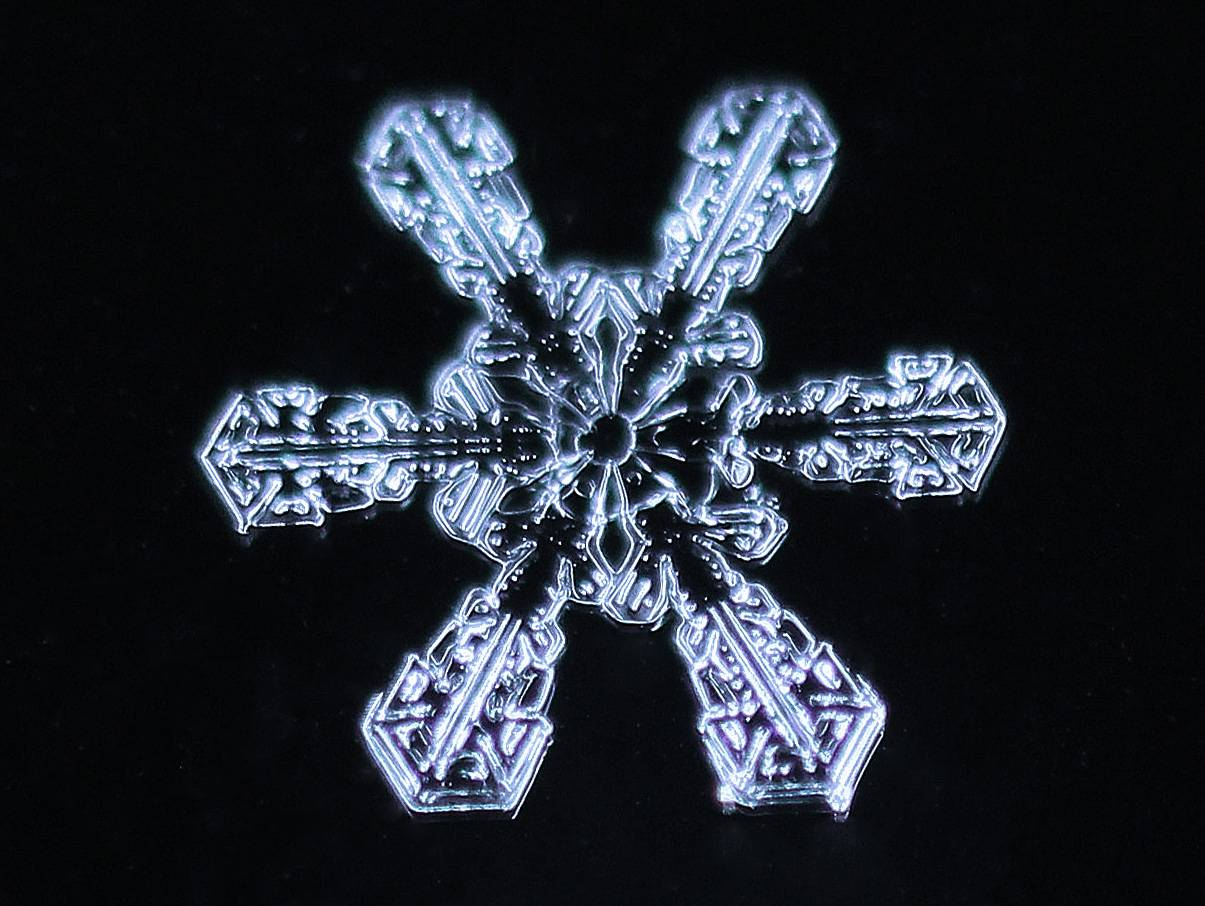 While meteorological Spring has begun, Winter continues to show its presence. I took this photo yesterday after a light snow shower. The photo is a 3.5 times life-size macro photo that I cropped to show an isolated snowflake. The snowflake seems to glow against the dark background and has a striking geometric pattern. A Canon MP-E 65mm 1-5x lens was used with a Canon MR-14EX ring lite flash, handheld.