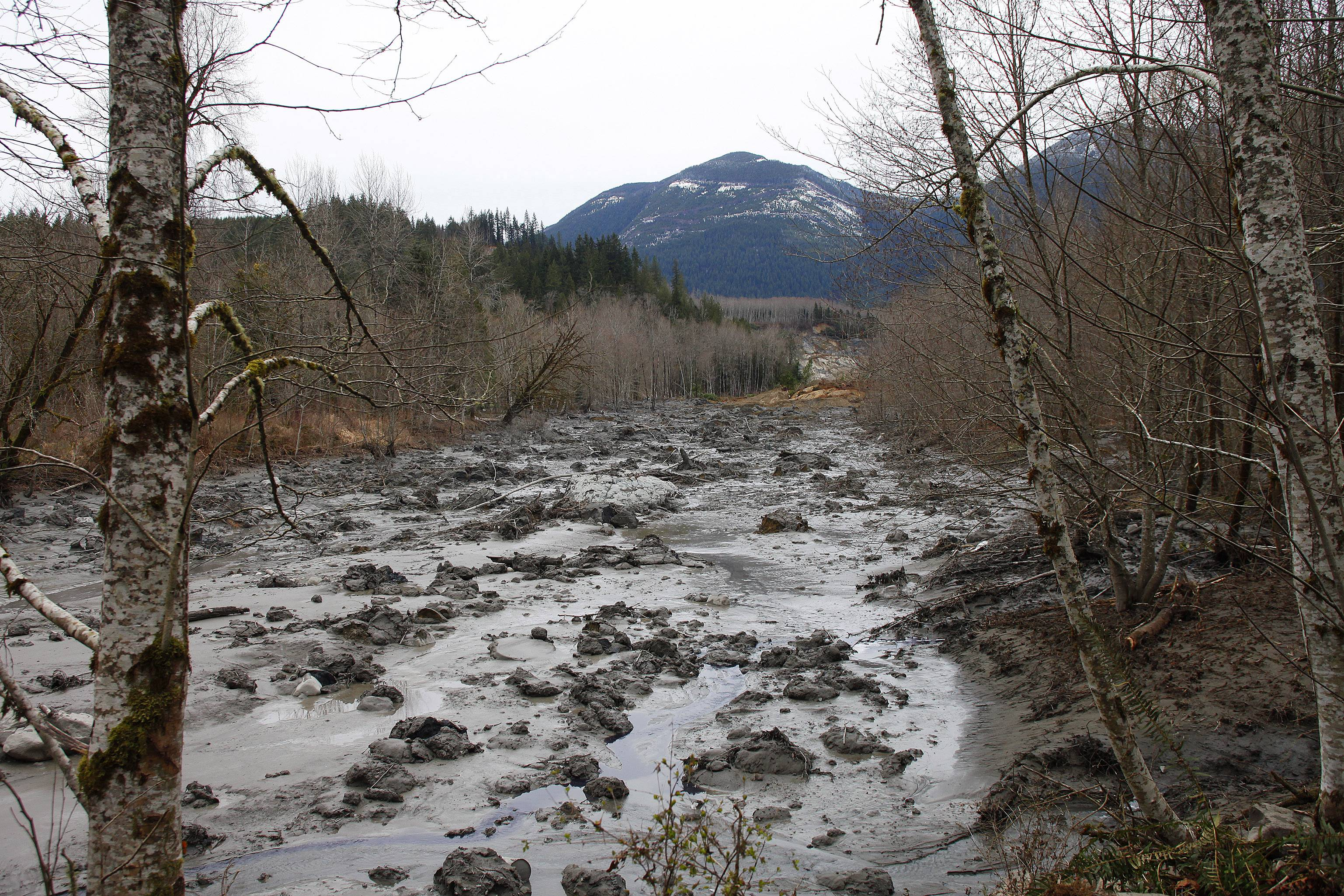 A fatal mudslide brought debris down the Stillaguamish River near Oso, Wash., Saturday, stopping the flow of the river and destroying several homes.