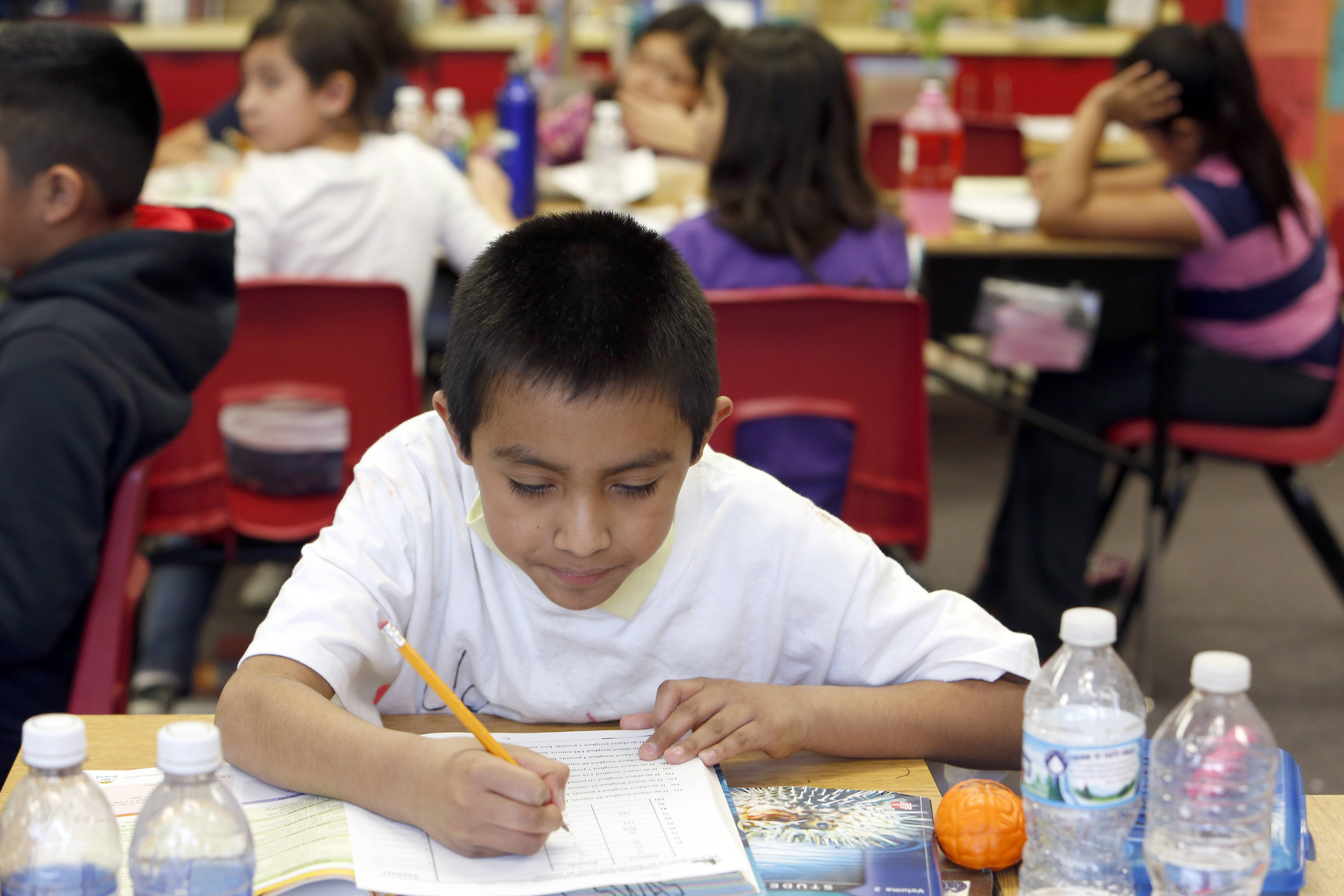 Creekside Elementary School fourth grader Jose Morales, 9, works on math problems in a segregated gifted class at the Elgin school. Elgin Area School District U-46's gifted program is slated for an overhaul after the district settled a nine-year-old discrimination lawsuit.