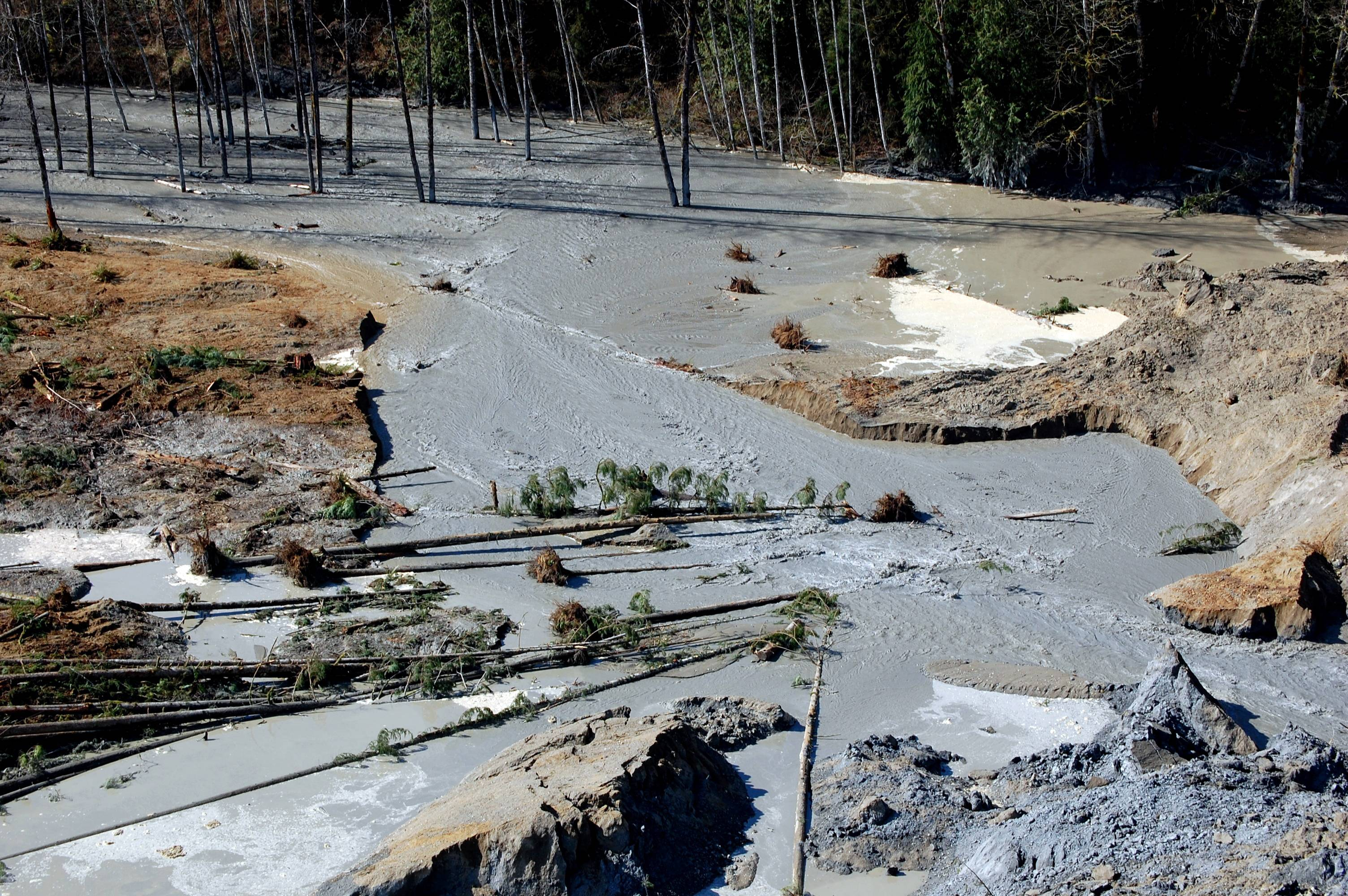 This is a view of the damage from Saturday's mudslide near Oso, Wash. At least 14 people were killed in the 1-square-mile slide that hit in a rural area about 55 miles northeast of Seattle on Saturday. Several people also were critically injured, and about 30 homes were destroyed.