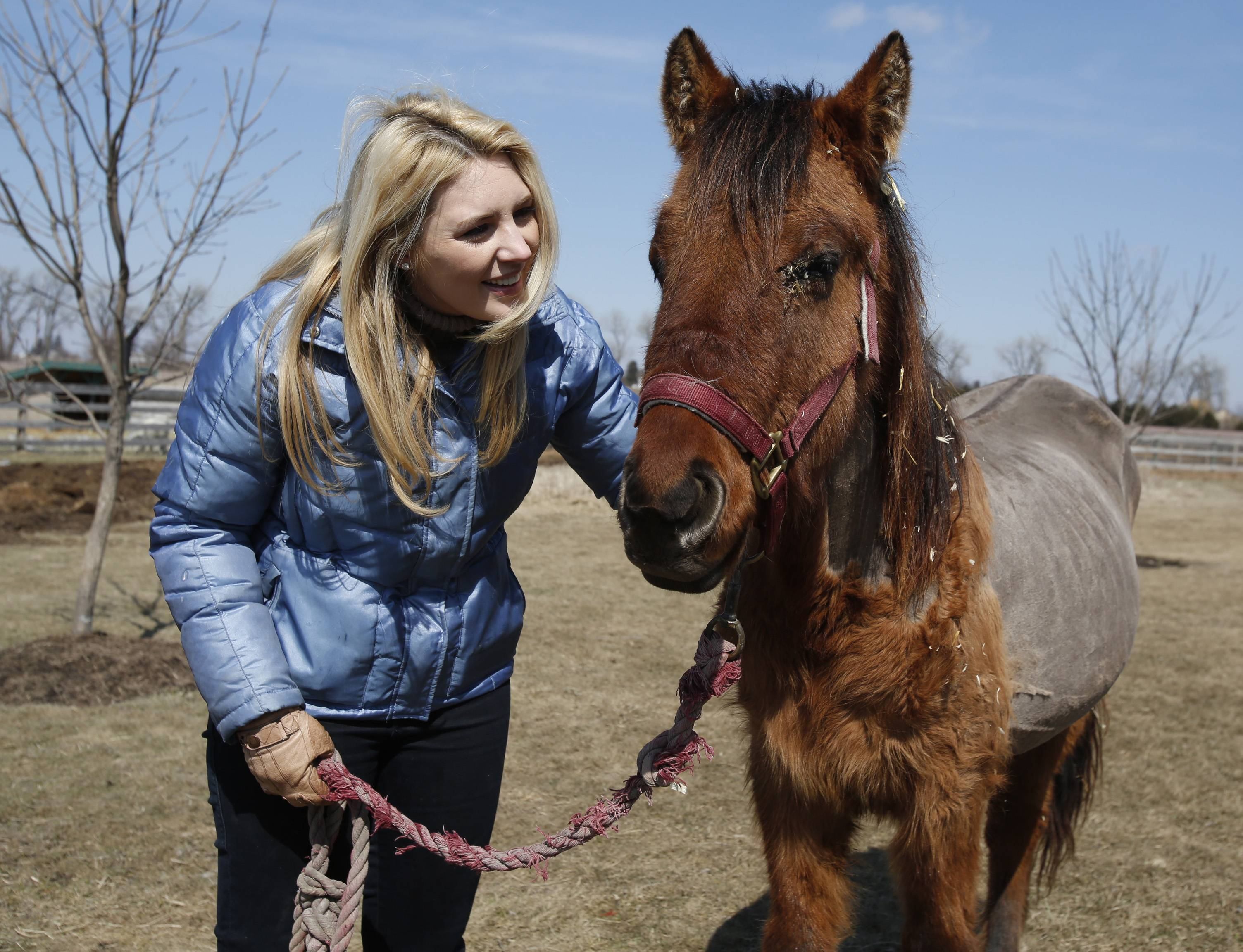 Laura Van Der Snick of St. Charles is volunteering her time to help coordinate the care of animals like this malnourished horse.