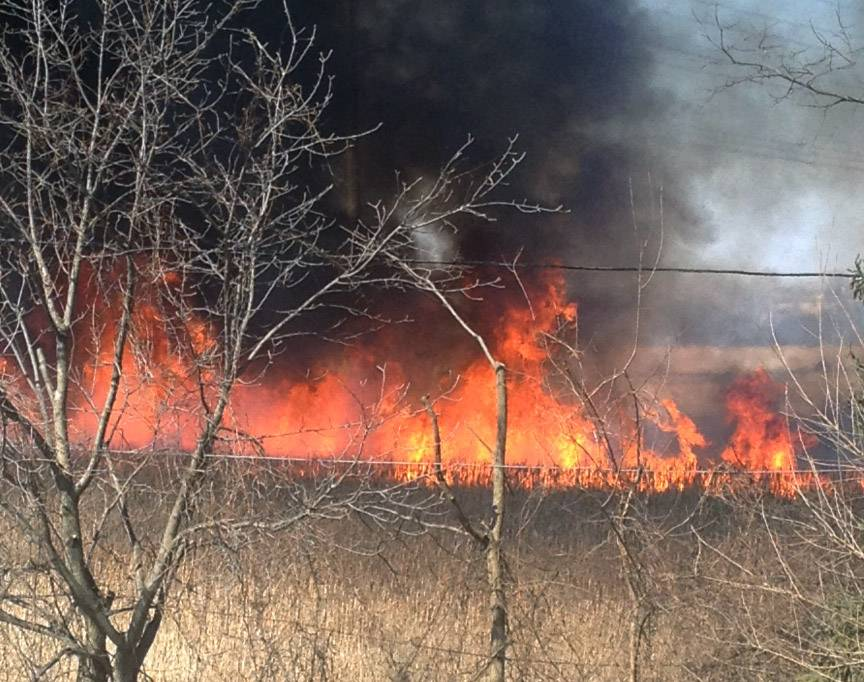 A large grass fire broke out at the Metra tracks along Terry Drive near Lake Villa on Monday afternoon.