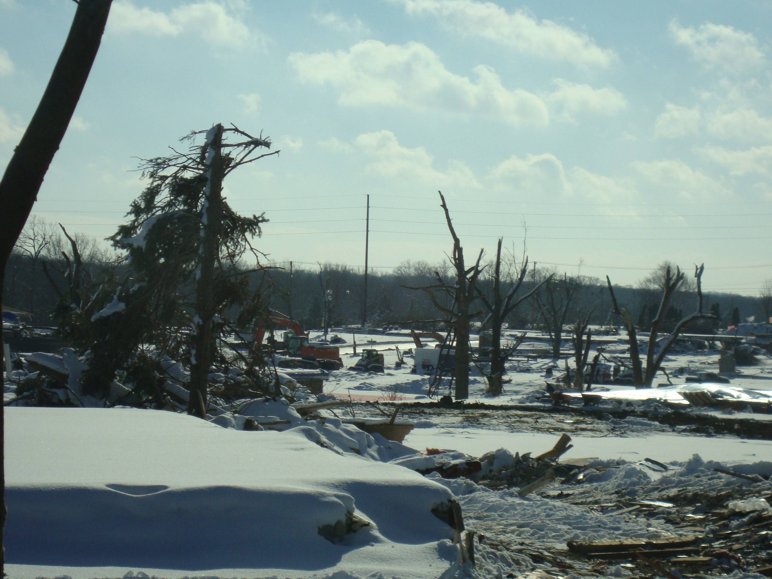 The Palatine Park District continues its aid efforts for the tornado ravaged community of Washington, Ill., with a fundraiser to purchase Trees for Washington. For details, visit palatineparks.org.
