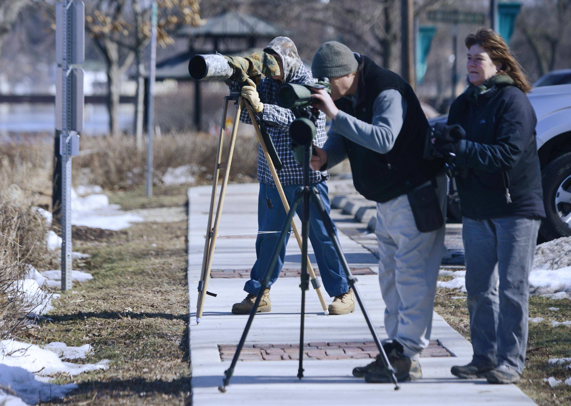 Charles Specht, from Mundelein, Sheilah Watson, from Lake Zurich, and Randall Wade, from Chicago, background, drove to West Dundee to photograph a Barrow's Golden Eye duck Thursday. The blue-headed bird is native to the northwest and is rarely seen in this area. When word got out through social media, the Fox River was lined with bird watchers.