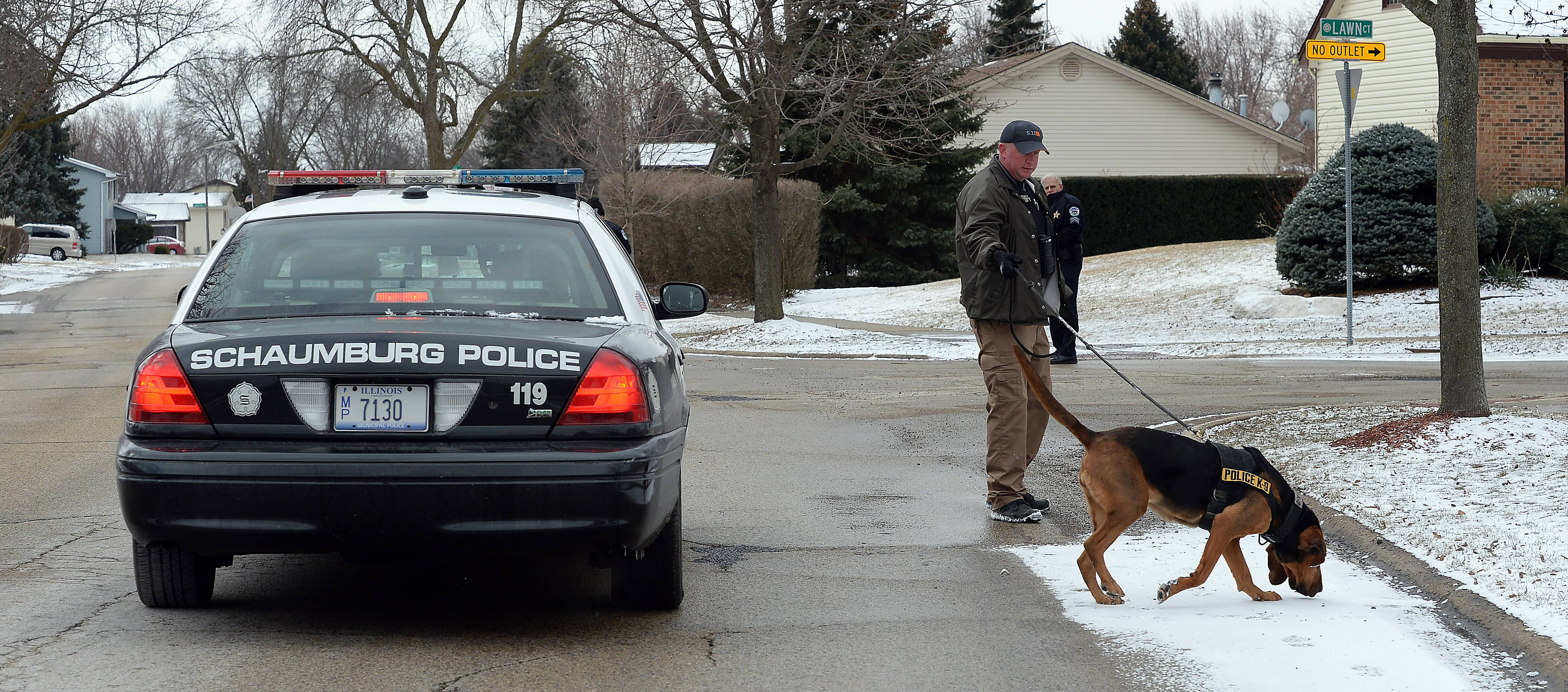 Schaumburg police and a Cook County Sheriff's K-9 unit search form suspects Tuesday morning after a home invasion in the 300 block of Pembroke Lane. A two-hour manhunt failed to locate a pair of suspects, who are now believed to be out of the area.