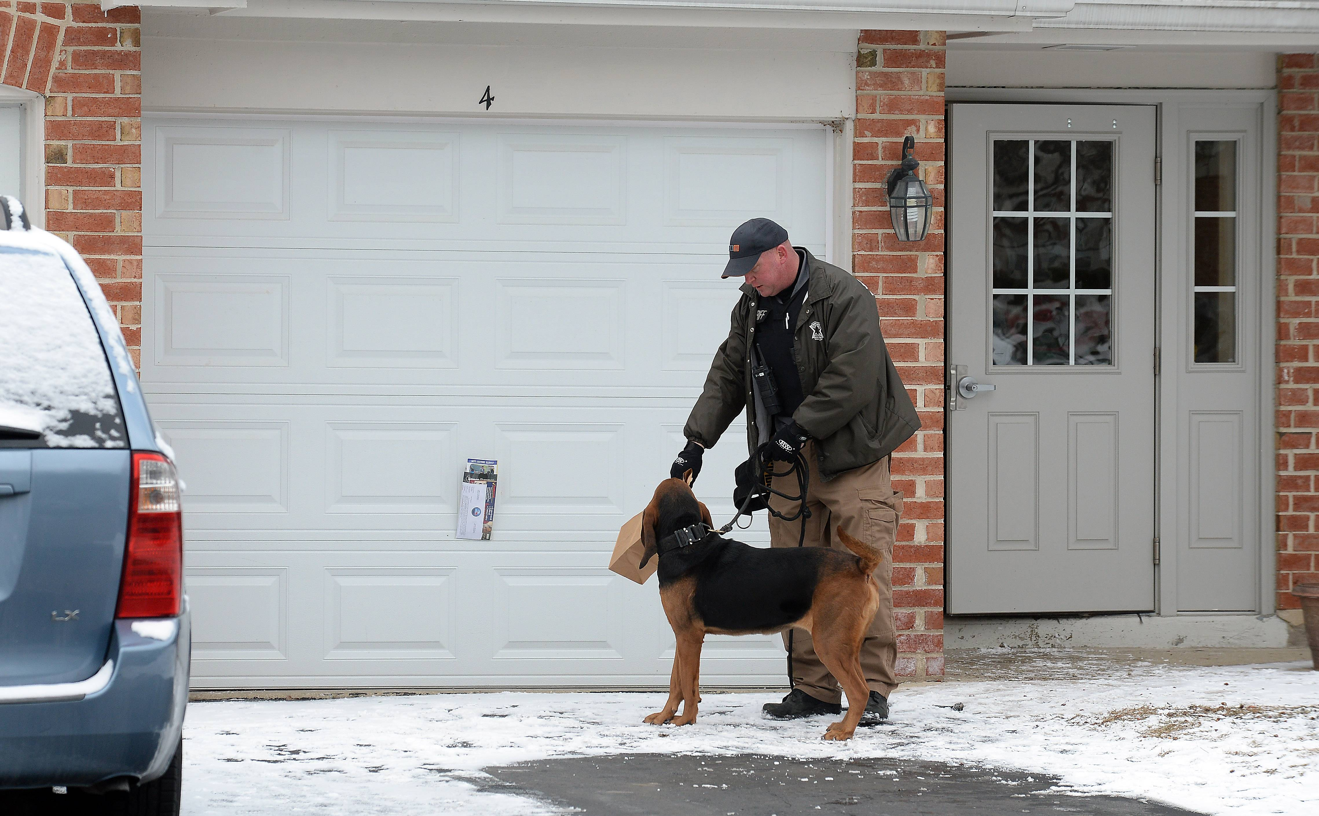 Schaumburg police and the Cook County Sheriff's K-9 unit search the area around Lawn Court near Weathersfield Way after a home invasion in the 300 block of Pembroke Lane early Tuesday morning. Here a canine officer from the sheriff's department lets the Bloodhound smell a bag of evidence in front of the site of the home invasion.