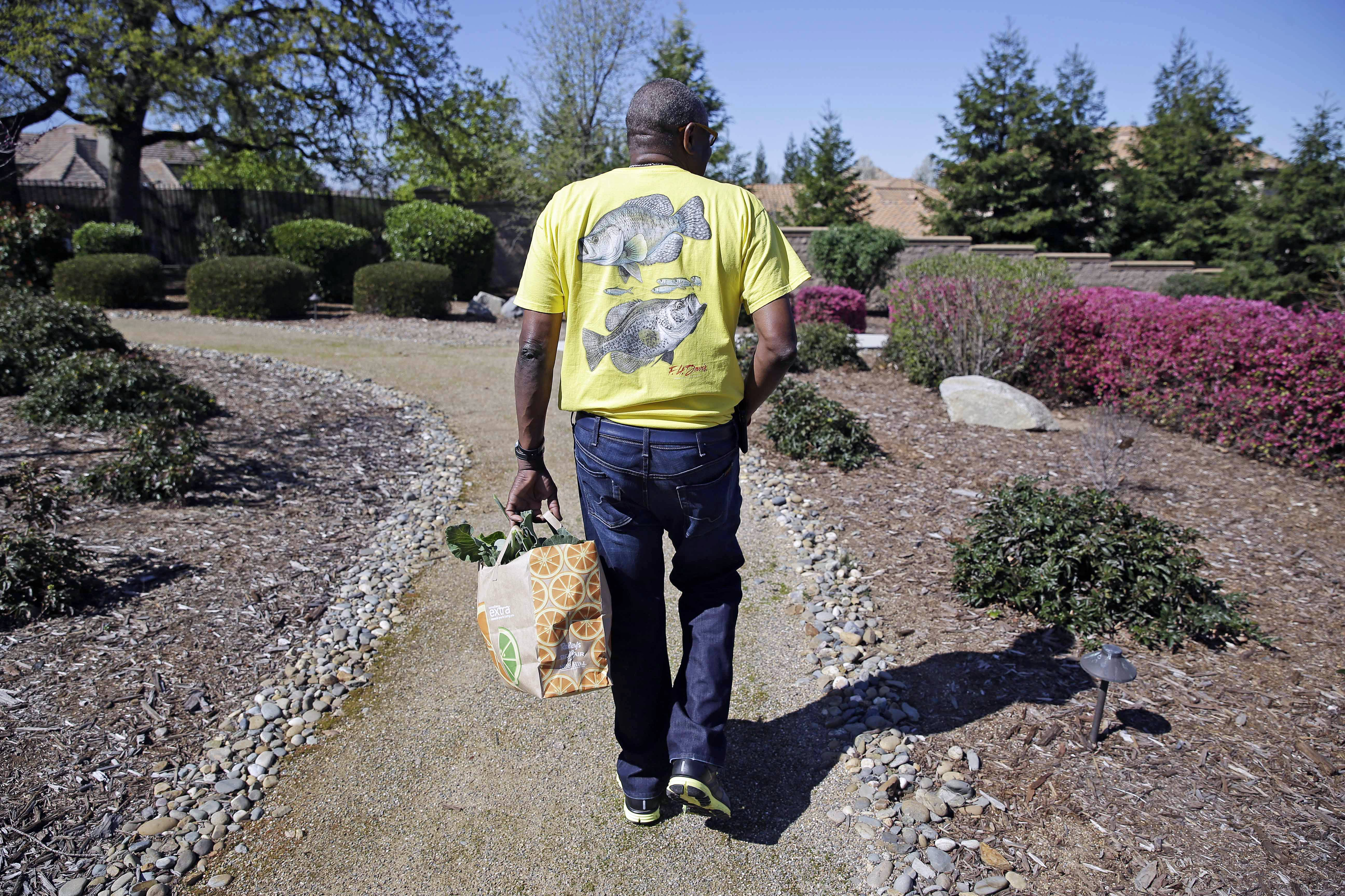 In this March 13, 2014 photo, Dusty Baker carries a bag of greens he just cut while walking through the yard at his home in Granite Bay, Calif. While his former players and fellow managers are busy preparing for opening day, Baker is busy tending to his crops, planning his next plantings and minding his vineyard and the several hybrid fruit trees that border it. Out of uniform for the first time since taking 2007 off between managerial jobs with the Cubs and Reds, Baker is not slowing down much from his pressure-packed days in the dugout.