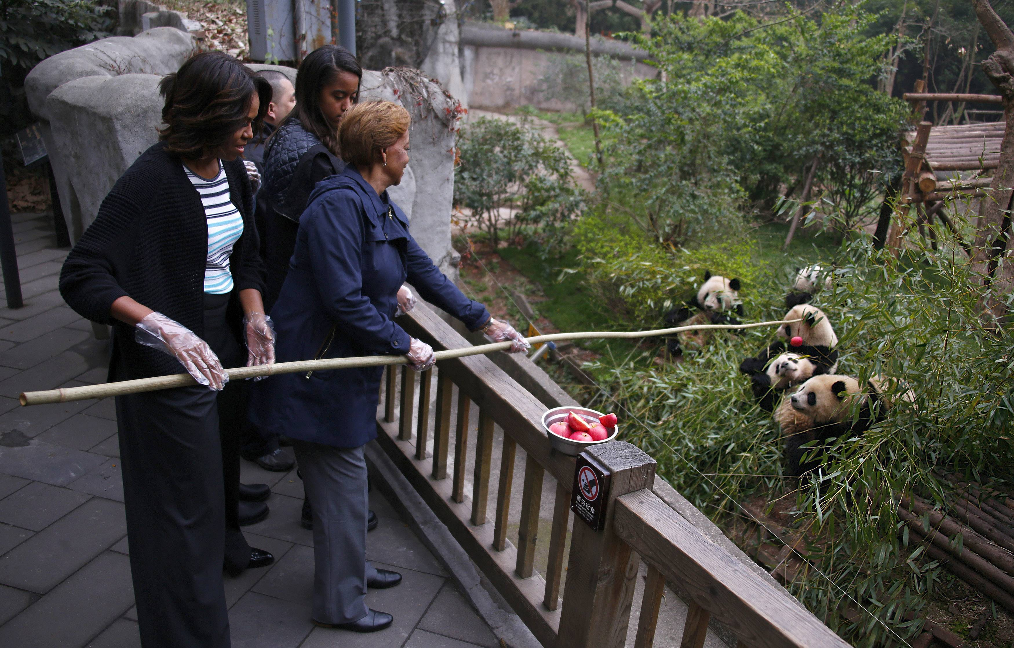 U.S. first lady Michelle Obama, left, and her mother Marian Robinson, right, feed apple to giant pandas during their visit at Giant Panda Research Base in Chengdu, Sichuan province, China Wednesday, March 26, 2014.
