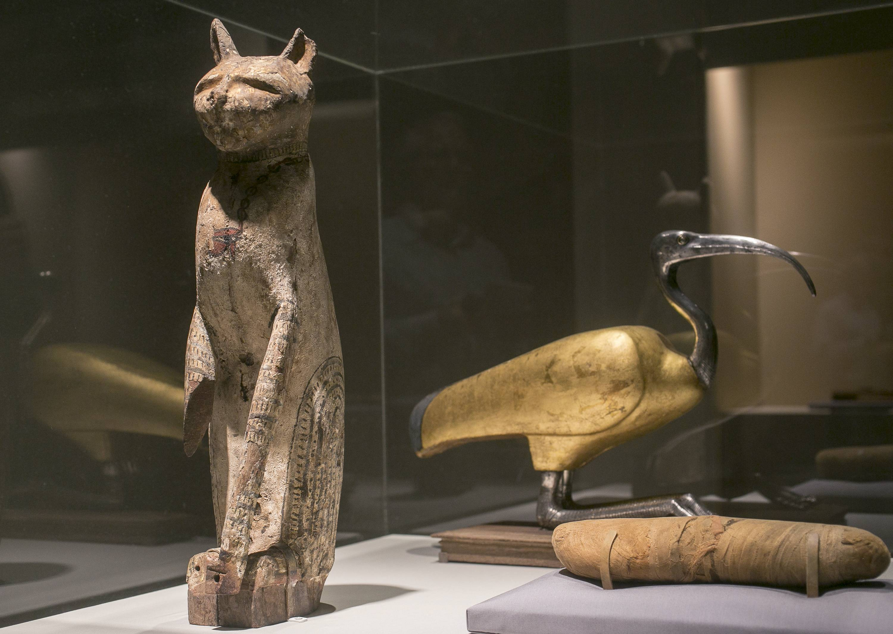 "A cat coffin with a mummy, left, and an ibis coffin is displayed as part of the exhibit ""Soulful Creatures: Animal Mummies in Ancient Egypt,"" at the Orange County's Bowers Museum in Santa Ana, Calif. The exhibition focuses on the mummification of animals in the ancient Egyptian culture and religion."