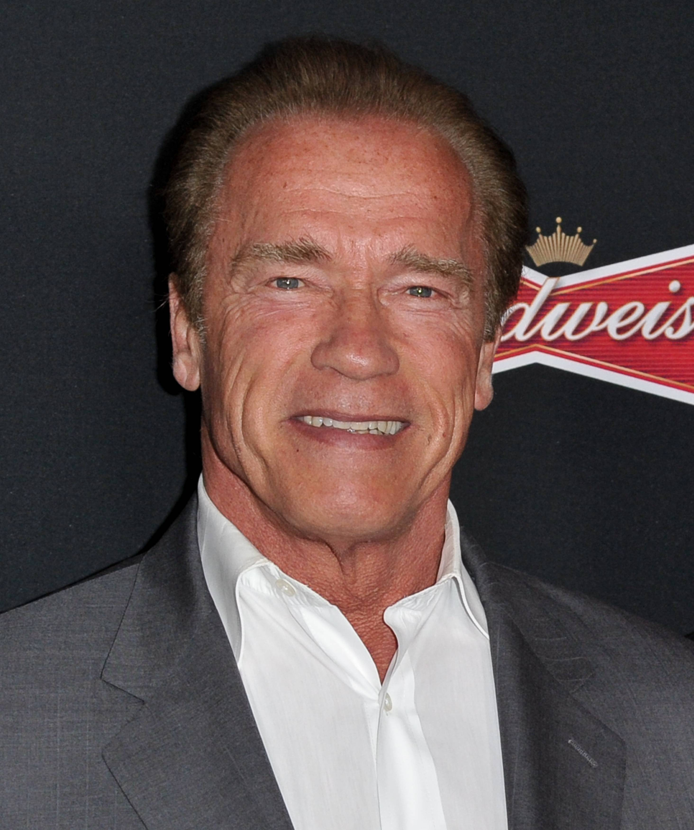 "Actor and former California Gov. Arnold Schwarzenegger at the LA Premiere of ""Sabotage,"" in Los Angeles."