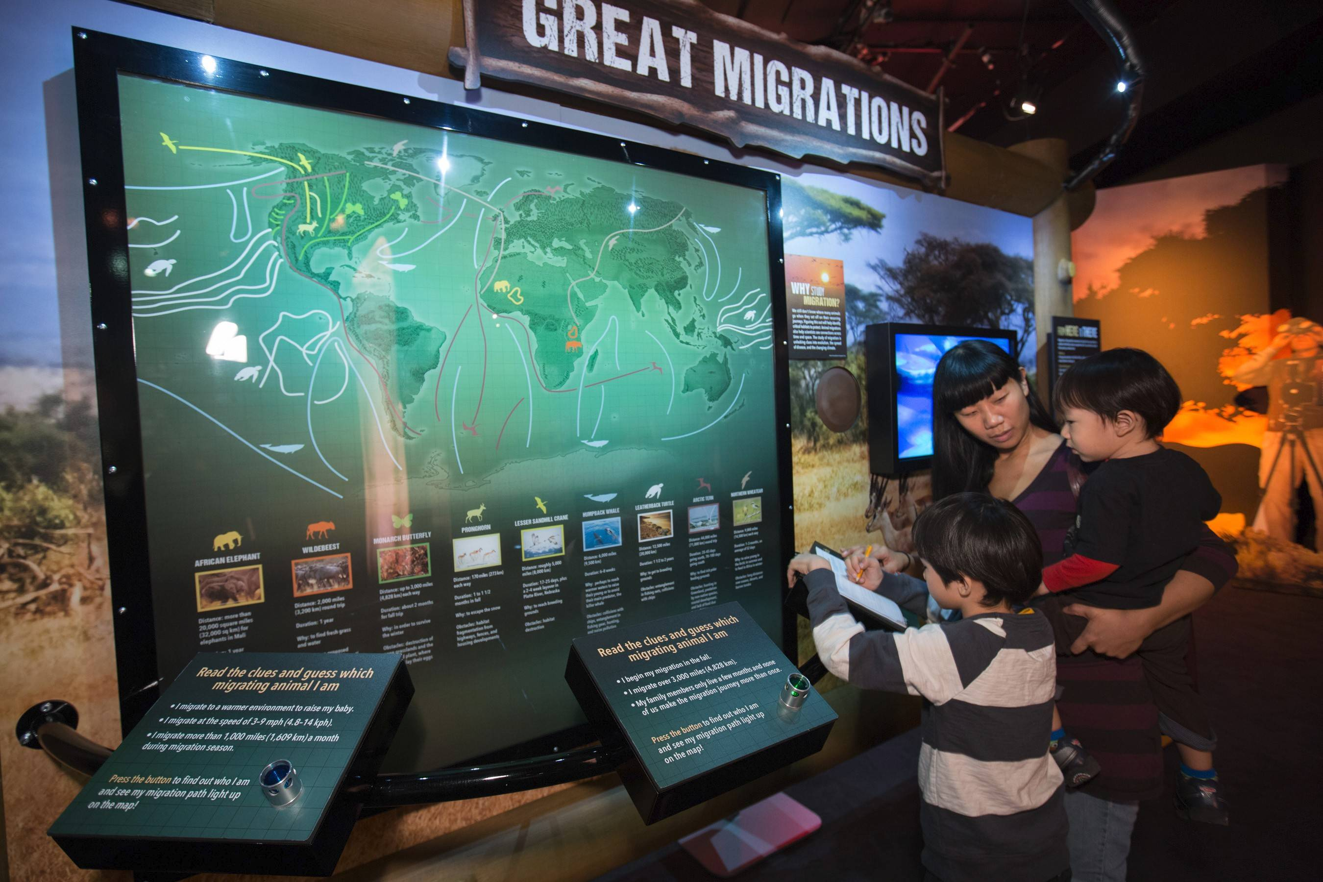 "Visitors to ""National Geographic Presents: Earth Explorers"" see how animal tracking and migration mapping skills come into play."