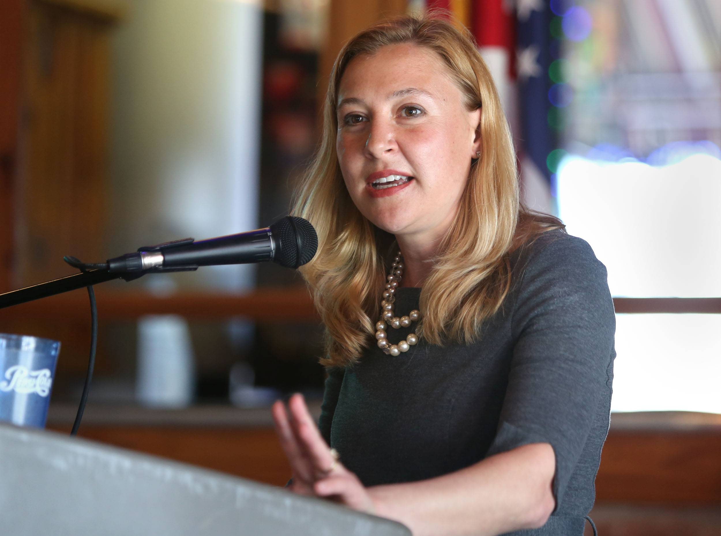 New state Rep. Anna Moeller addresses supporters at Danny's Pizza in downtown Elgin on Sunday after her swearing in ceremony.