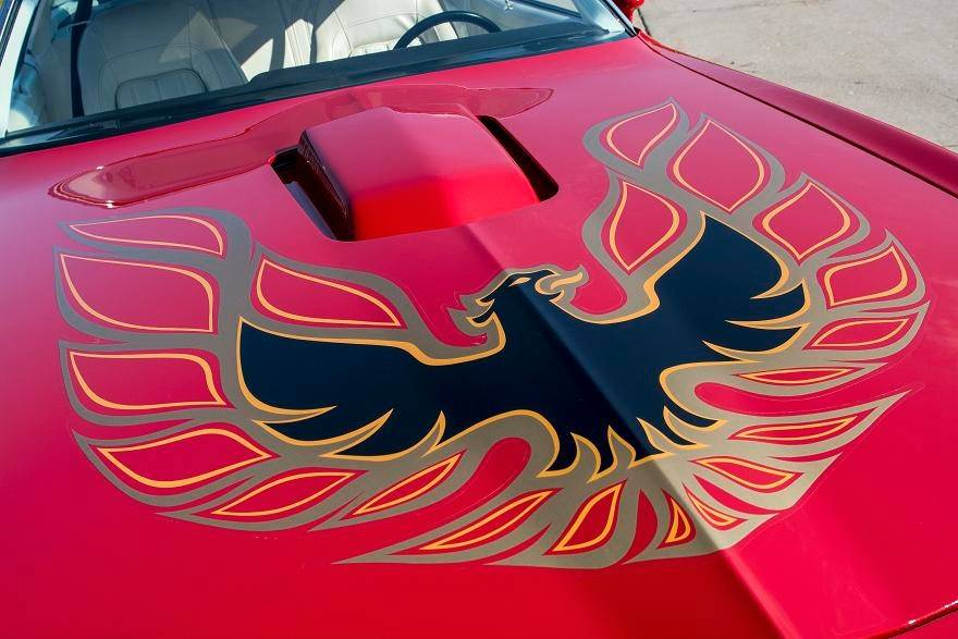 After being repainted, the Trans Ams graphics were replaced by Goldstein.