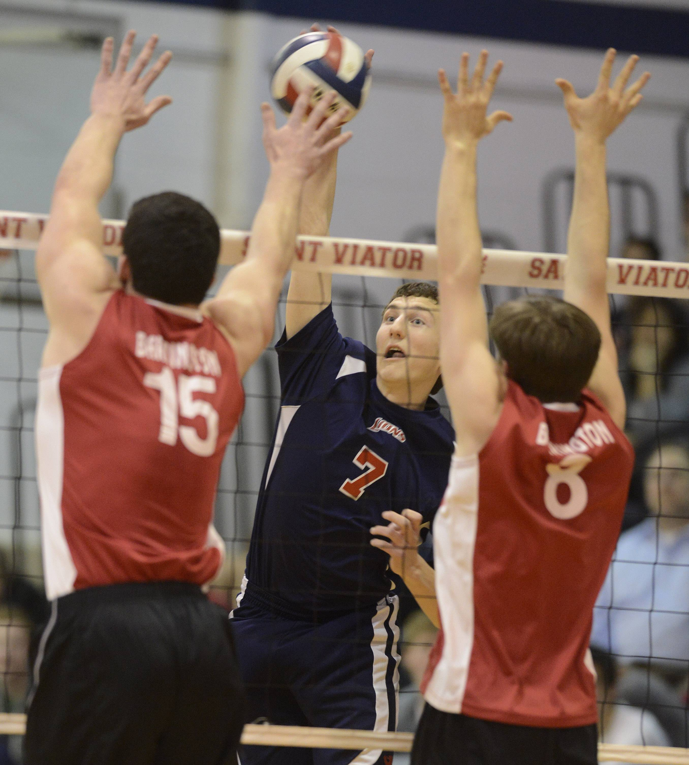 St. Viator's Ethan Wolf, middle, tries for a kill between Barrington's Colin Castagna, left, and Sean Frey during Tuesday's boys volleyball game in Arlington Heights.