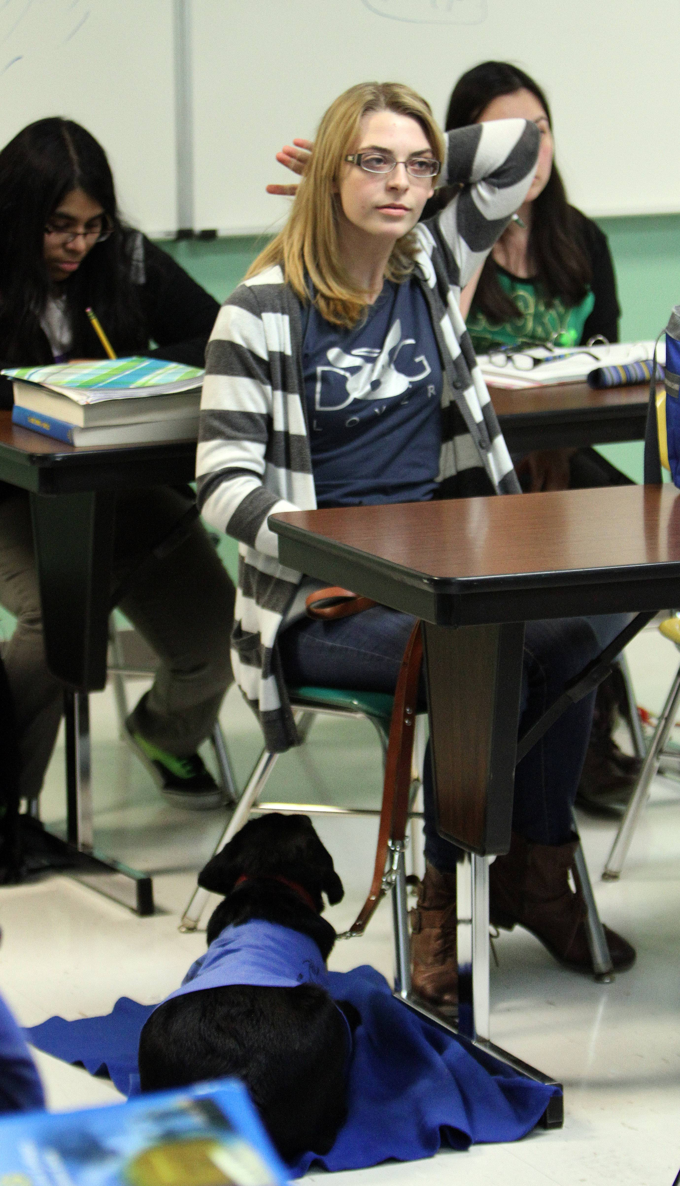 Grayslake Central High School junior Abby Perkowitz is providing guide dog training for Bailey at the school.