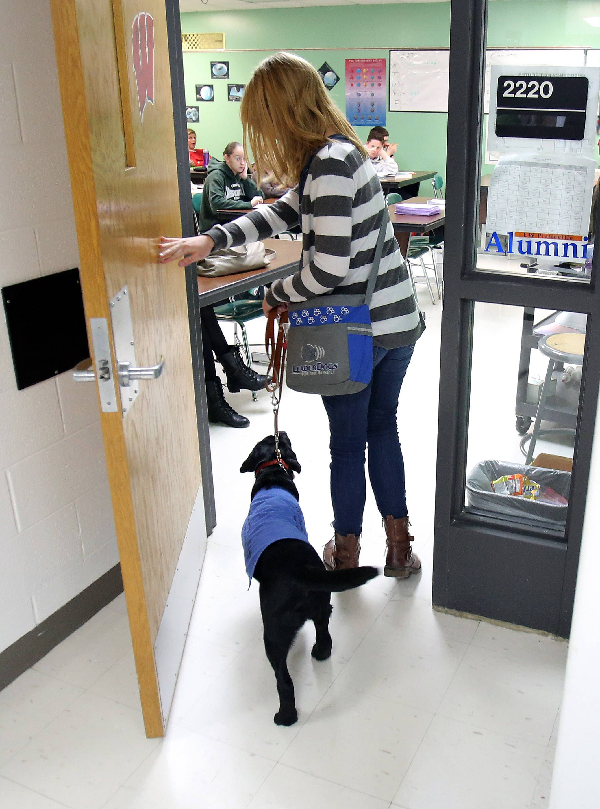 Junior Abby Perkowitz walks into class with 5-month-old Bailey, a service dog she is training at Grayslake Central High School.