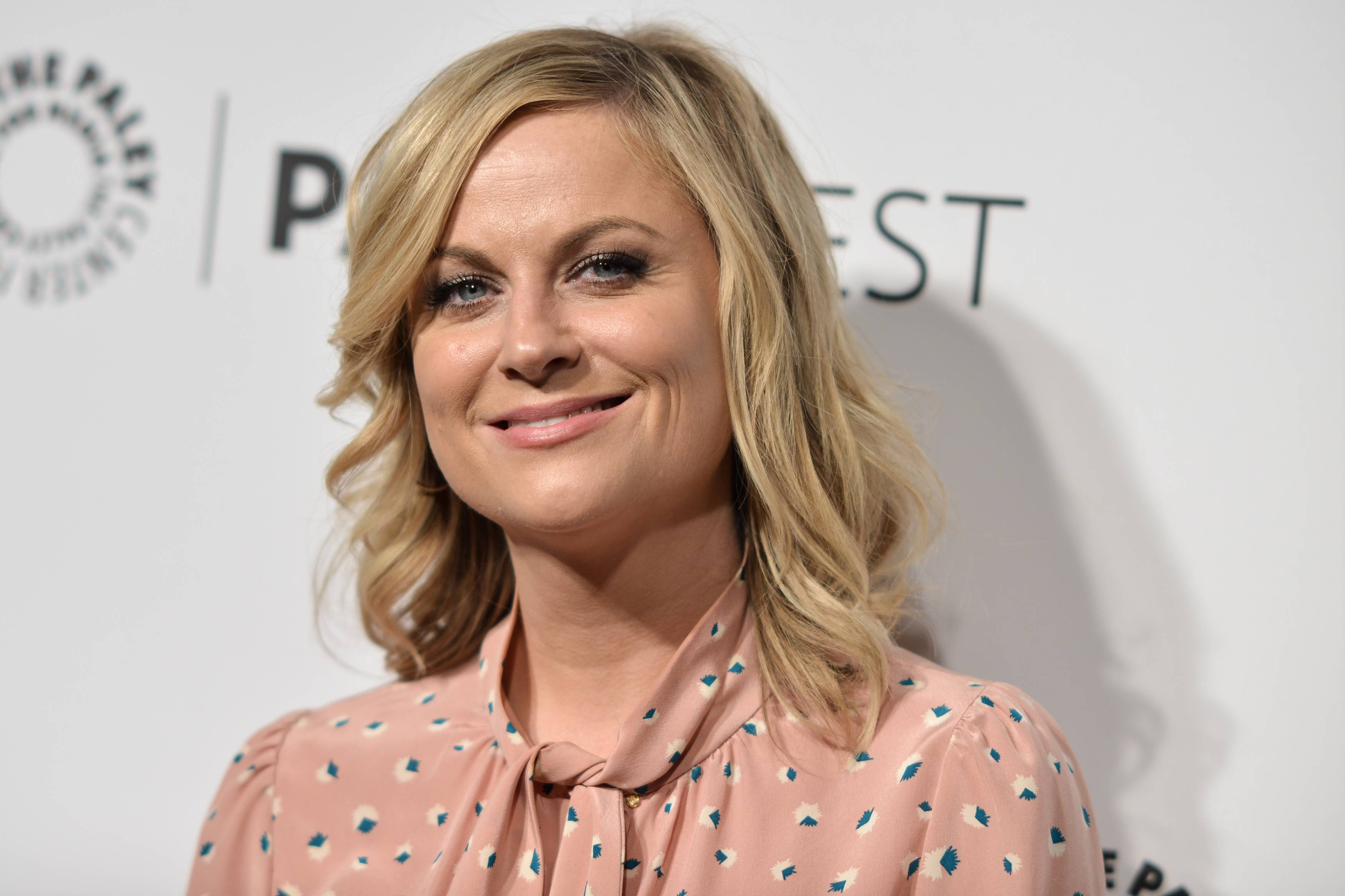 "This March 18, 2014 file photo shows actress Amy Poehler at PaleyFest 2014 ""Parks and Recreation,"" in Los Angeles. Poehler's brother Greg stars in ""Welcome to Sweden,"" debuting July 10, 2014, on the same network. Poehler's brother Greg also created, wrote and serves as executive producer of the show based on his life which was shot mainly in Sweden."