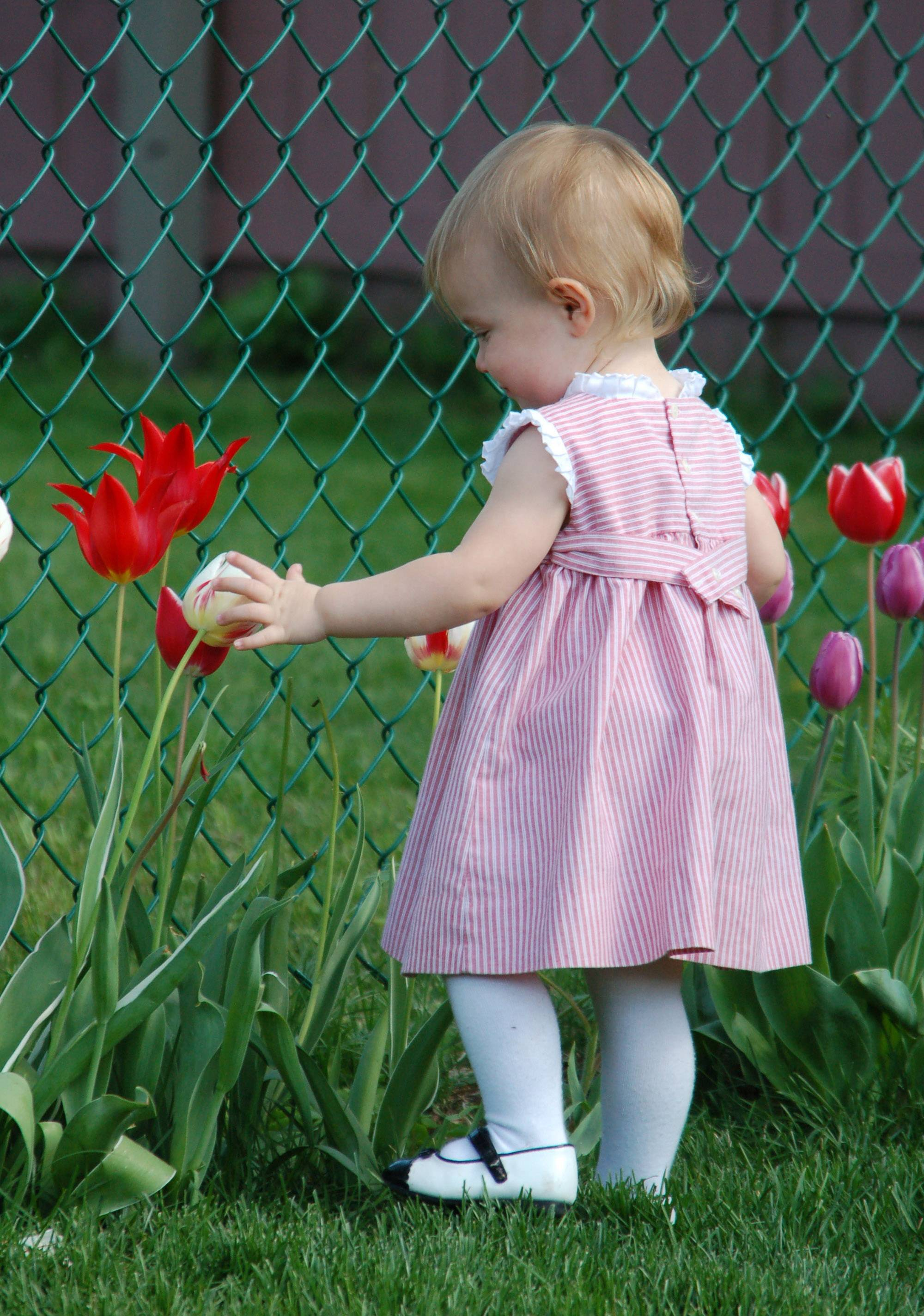 A young girl walks around the tulips in a Wauconda garden last Easter.