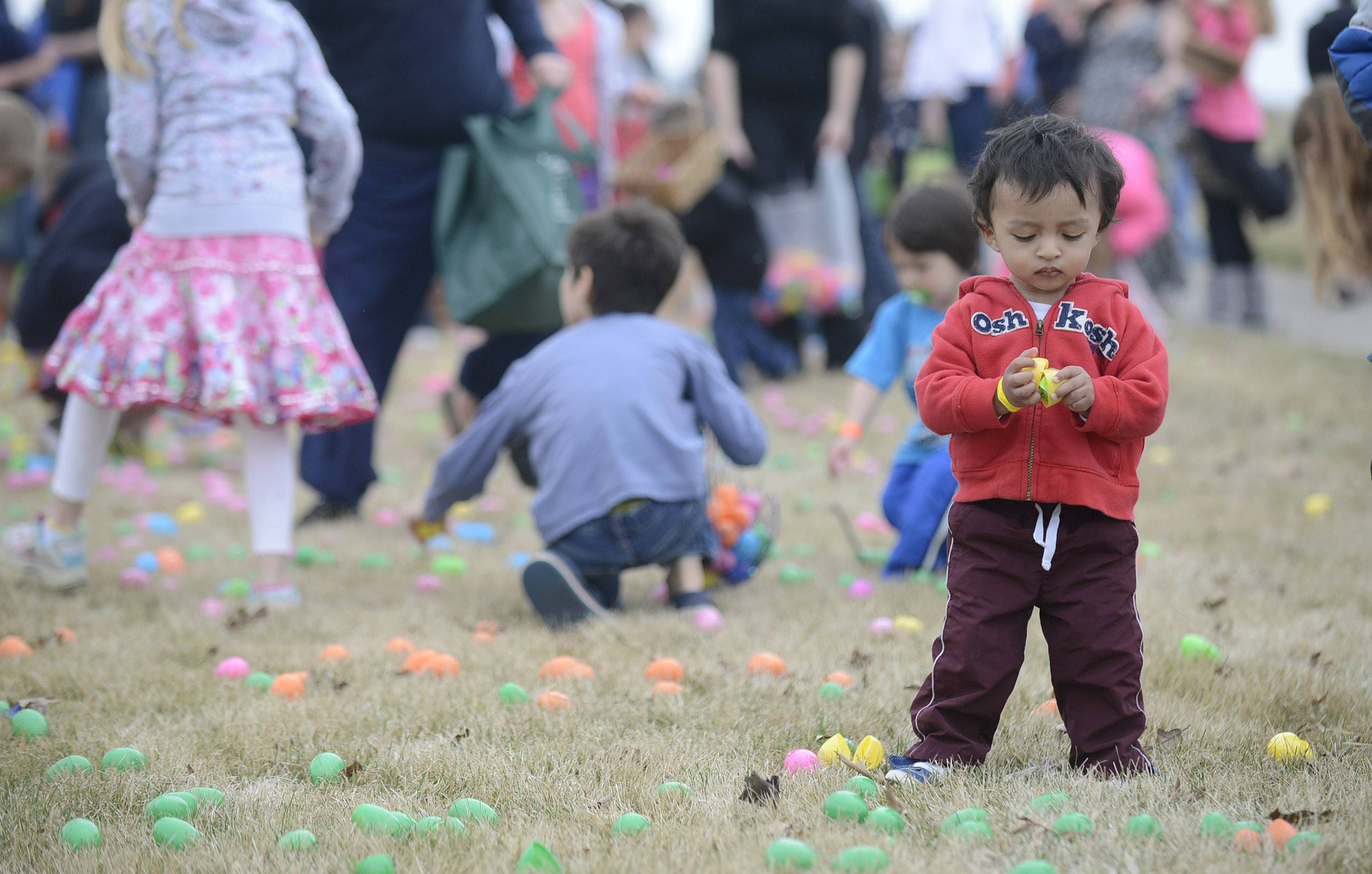Vincent Blanquel, 1½, of Batavia is unfazed by the ruckus going on around him Saturday during the Easter egg hunt at Faith Baptist Mill Creek Creek Church in Geneva.