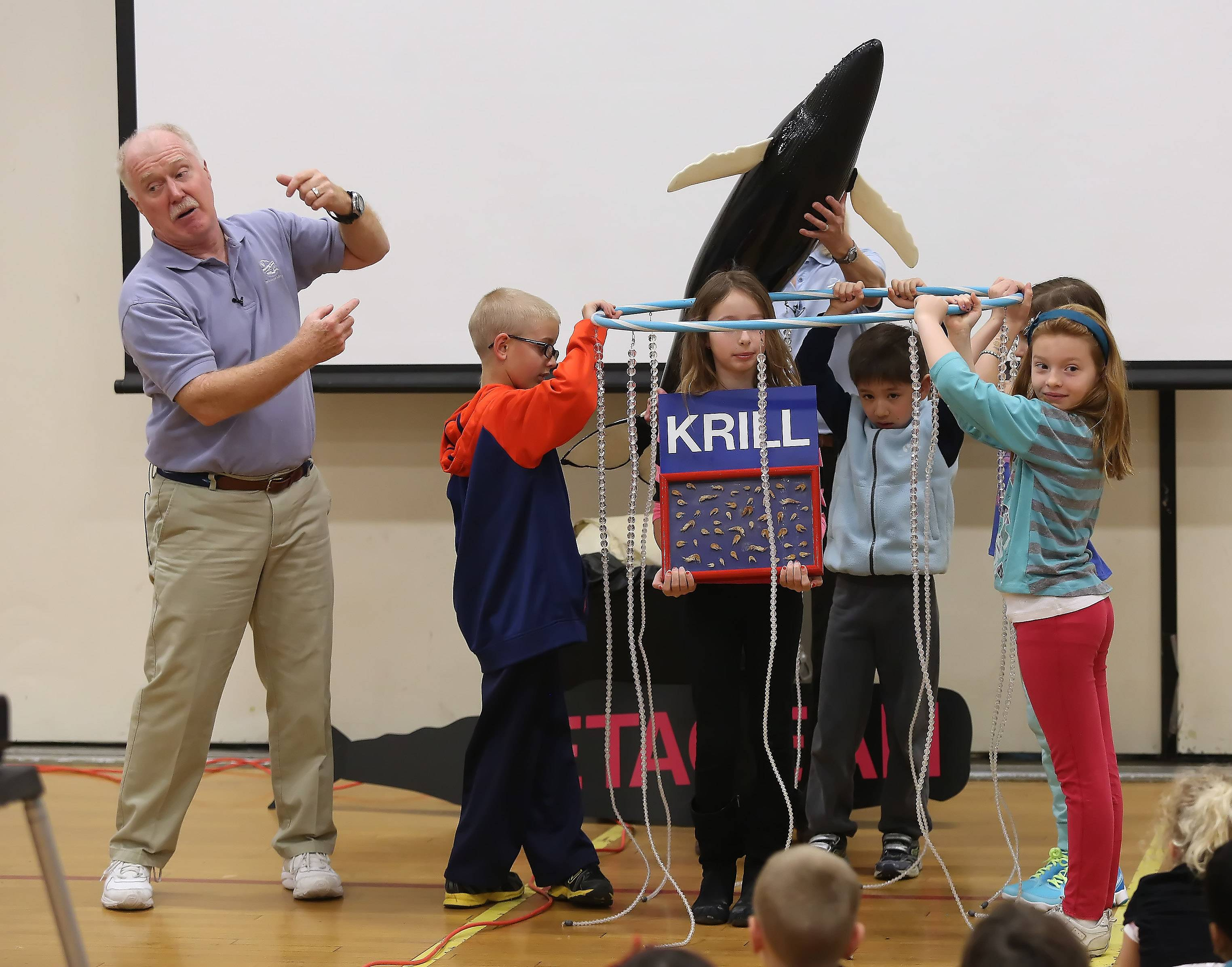 "Marine biologist Wayne Brown describes the eating habits of a humpback whale with the help of Butterfield School second grade students Luke Kallieris, Kaitlin Gajewicz, Sam Kim, Amy Bermingham and Sophia DeBruler during ""The Underwater Adventure"" program Monday. Brown and his wife, Karen, used models and props to teach more than 500 Libertyville students about the habits of whales."