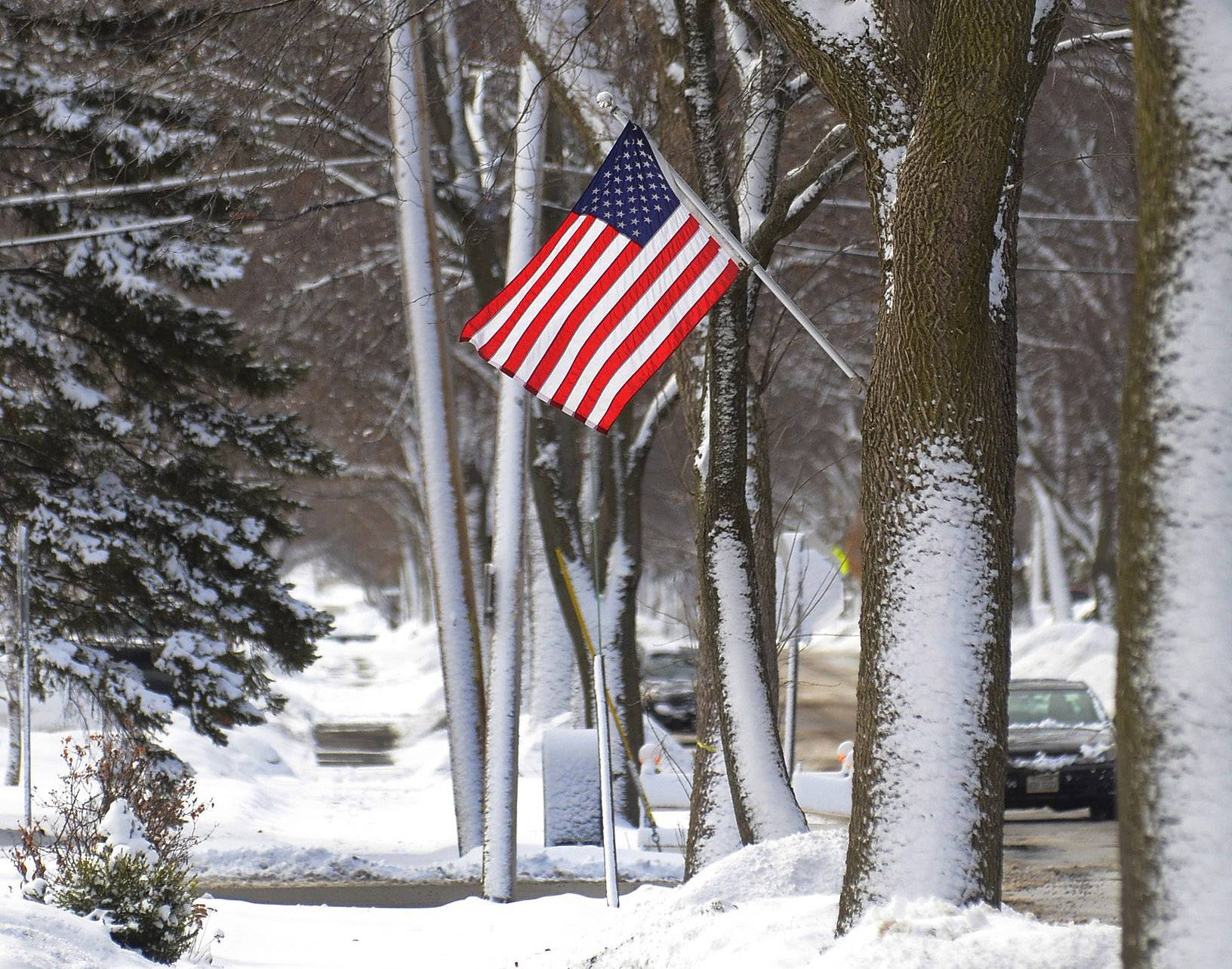 It's April, and I know everyone is sick of seeing pictures of snow scenes, but this was one of the last (hopefully) I shot earlier in March. An American flag along Dwyer Avenue in Arlington Heights creates a stark contrast to a basically monochromatic morning snow scene. This photo was published in the Perspective column in the print edtion.