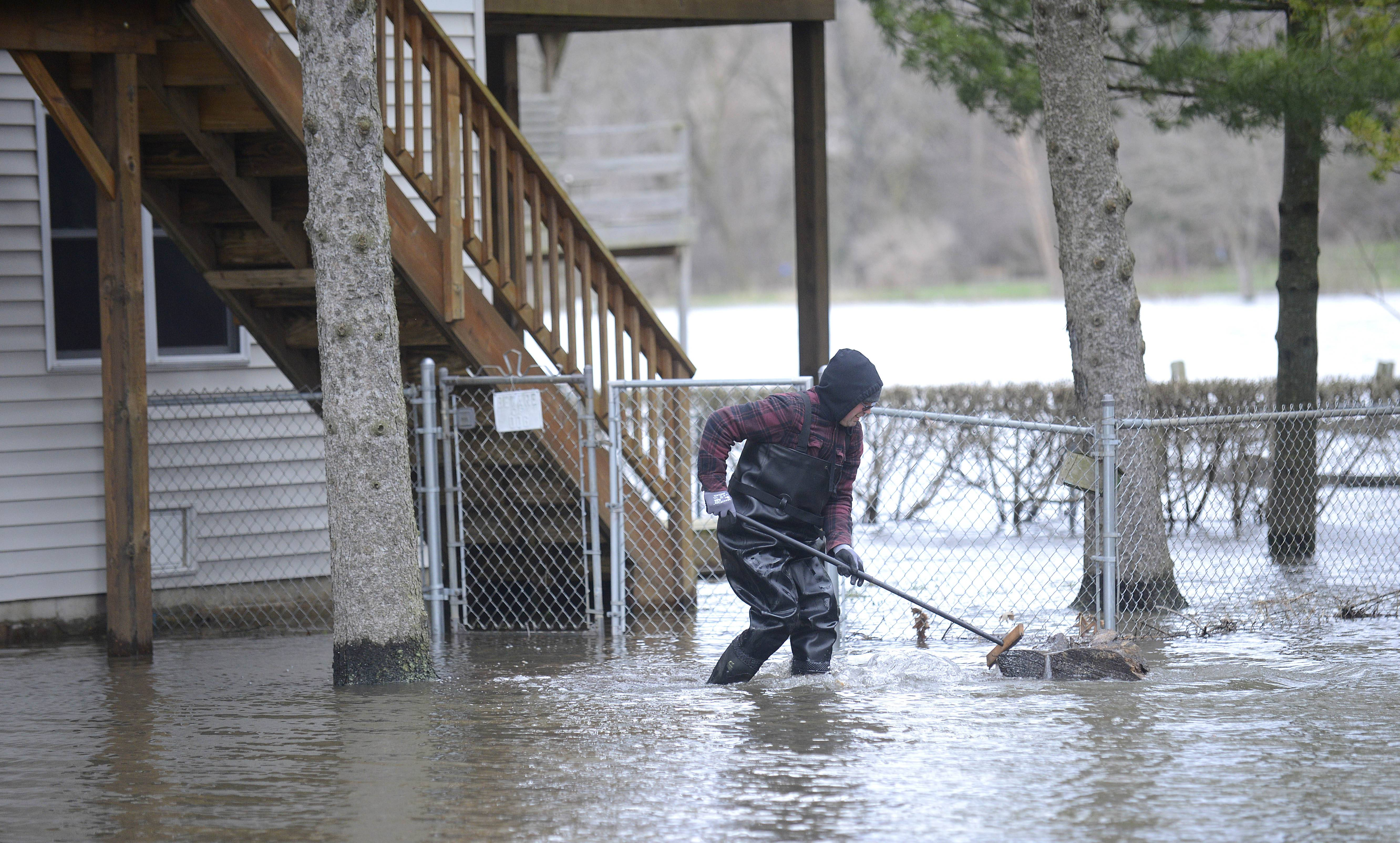 Mike Salmon of St. Charles Township walks back toward his house after removing large tree trunks from his lawn on Friday, April 19 after they washed up yesterday. Salmon has lived on Grove Ave. for the past 25 years and after the big flood in 2007, he raised the elevation of his home. He did not have any flooding problems inside his home this time.