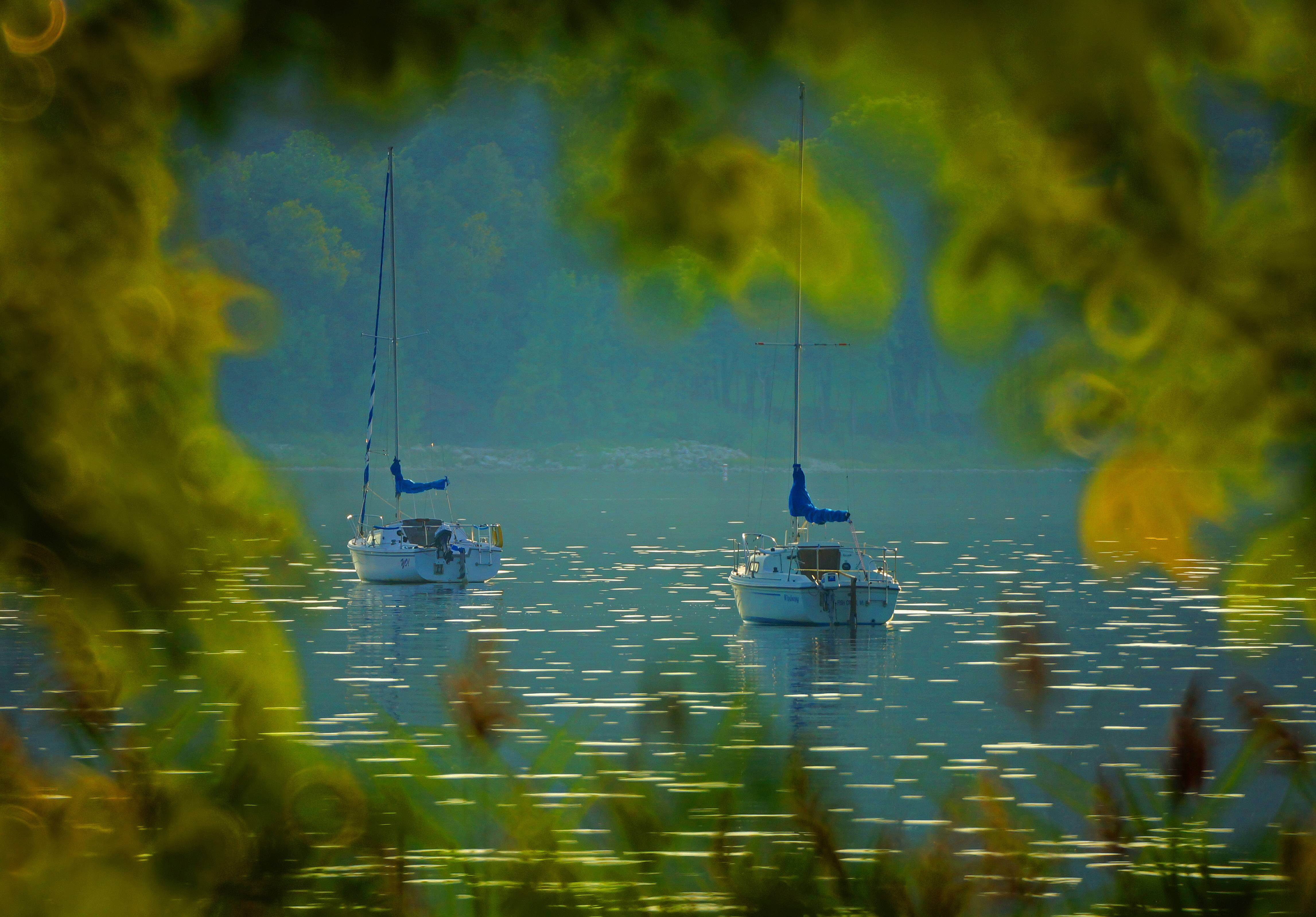My wife and I took a summer trip to the village of Ephraim in Door County, Wis. We spotted these twin sailboats at sunset framed by the trees and reeds lining the shore of beautiful Eagle Harbor.