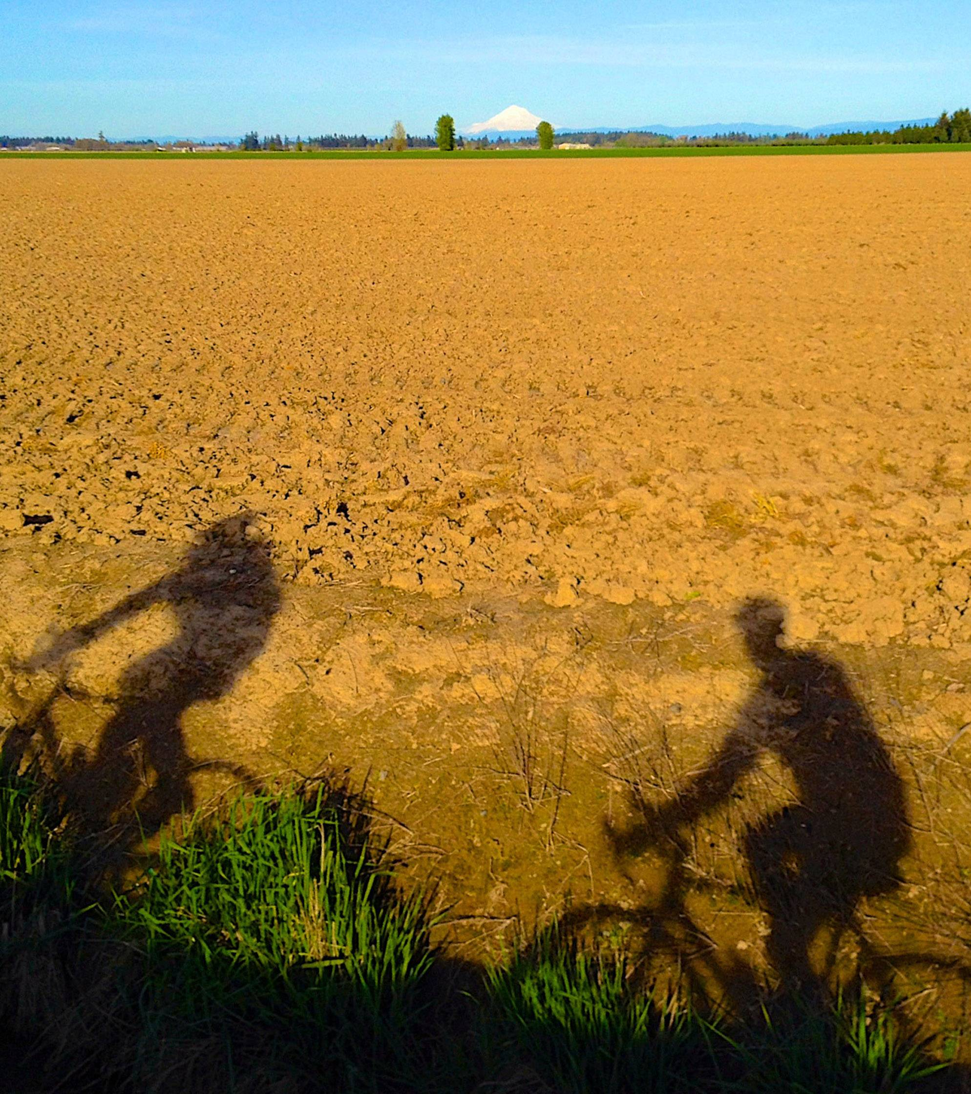 Bicyclists pass by the countryside near Portland, Oregon earlier this month.