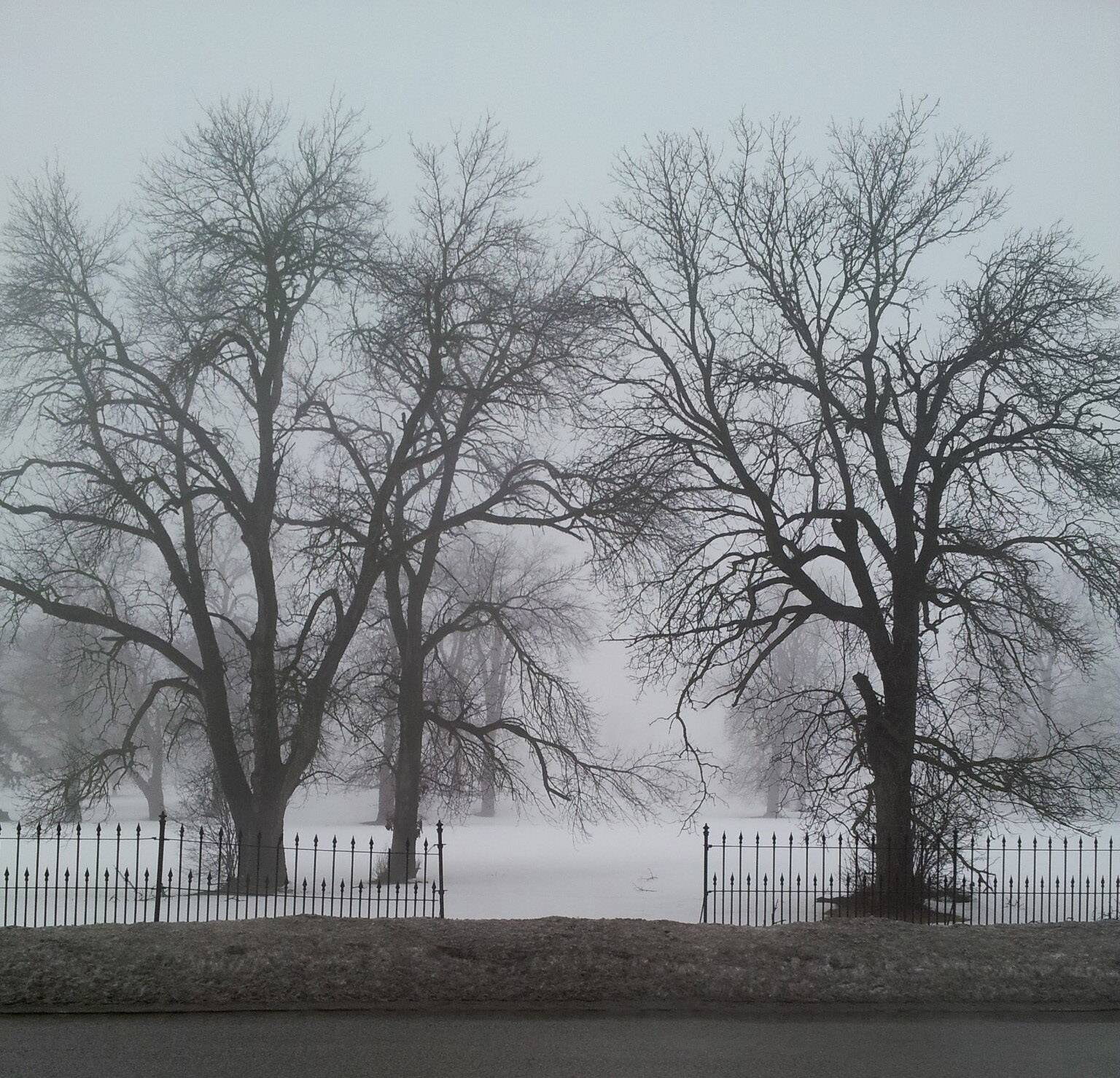 This photo was taken in March on a really foggy day while stopped in traffic on Route 31 just across from Elgin Mental Health Center.
