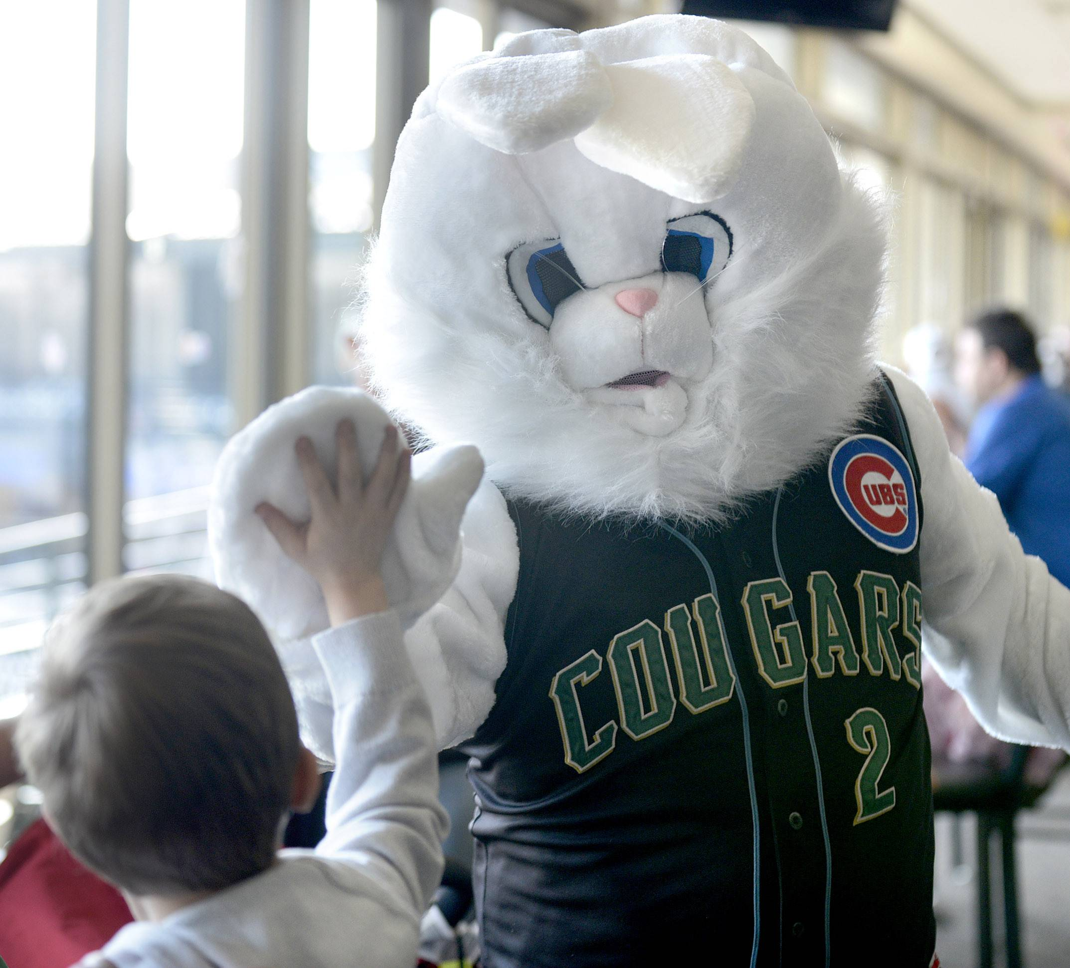 Zach DellaFranco, 6, of St. Charles gives the Easter Bunny a high-five at the Kane County Cougars' Easter breakfast at Fifth Third Bank Ballpark in Geneva on Saturday.