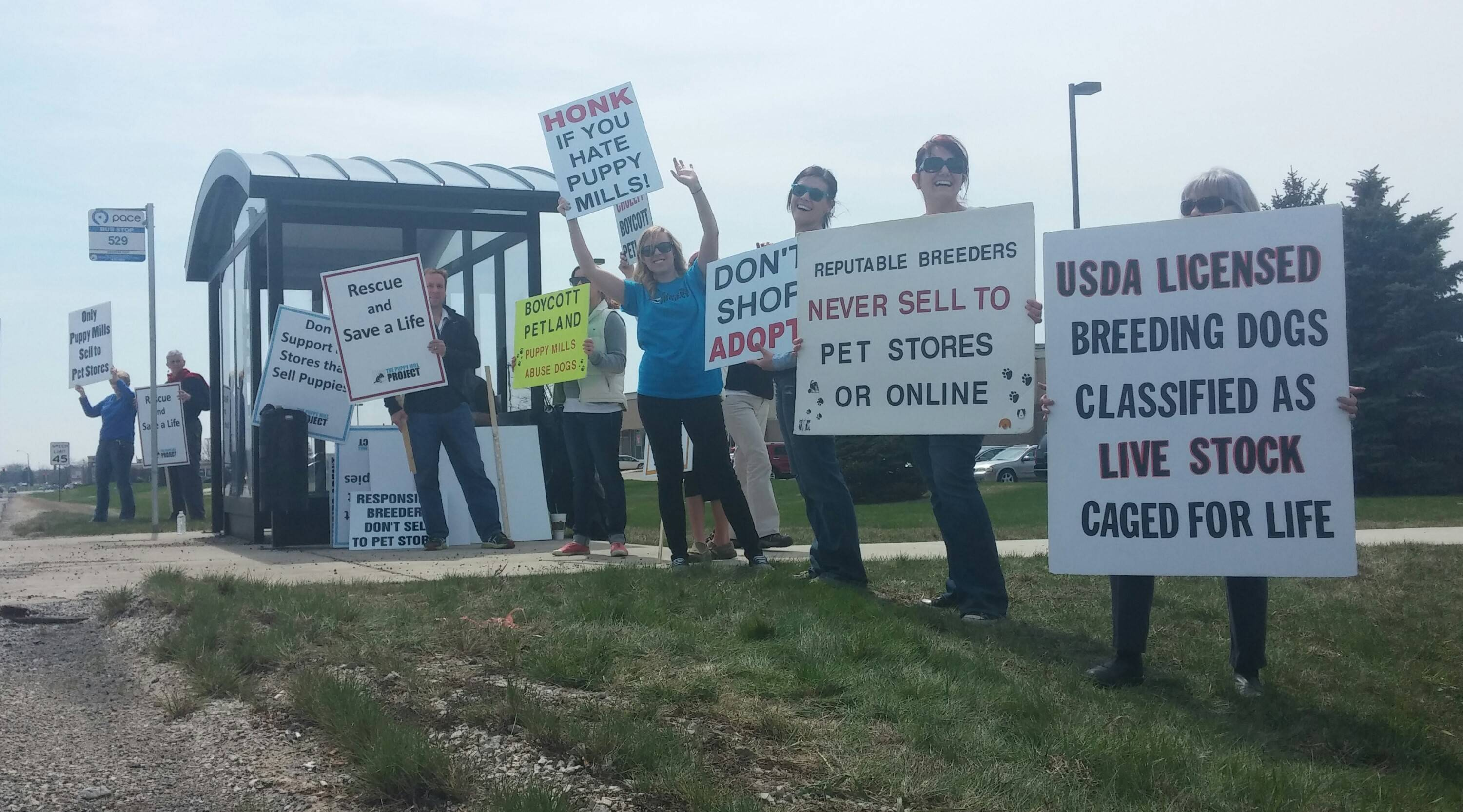 Members of The Puppy Mill Project held their first protest Saturday in Kane County on Randall Road outside the Petland in Batavia. Organizers said they sought to raise awareness about the dangers of mass breeding and to educate consumers about adoption alternatives.