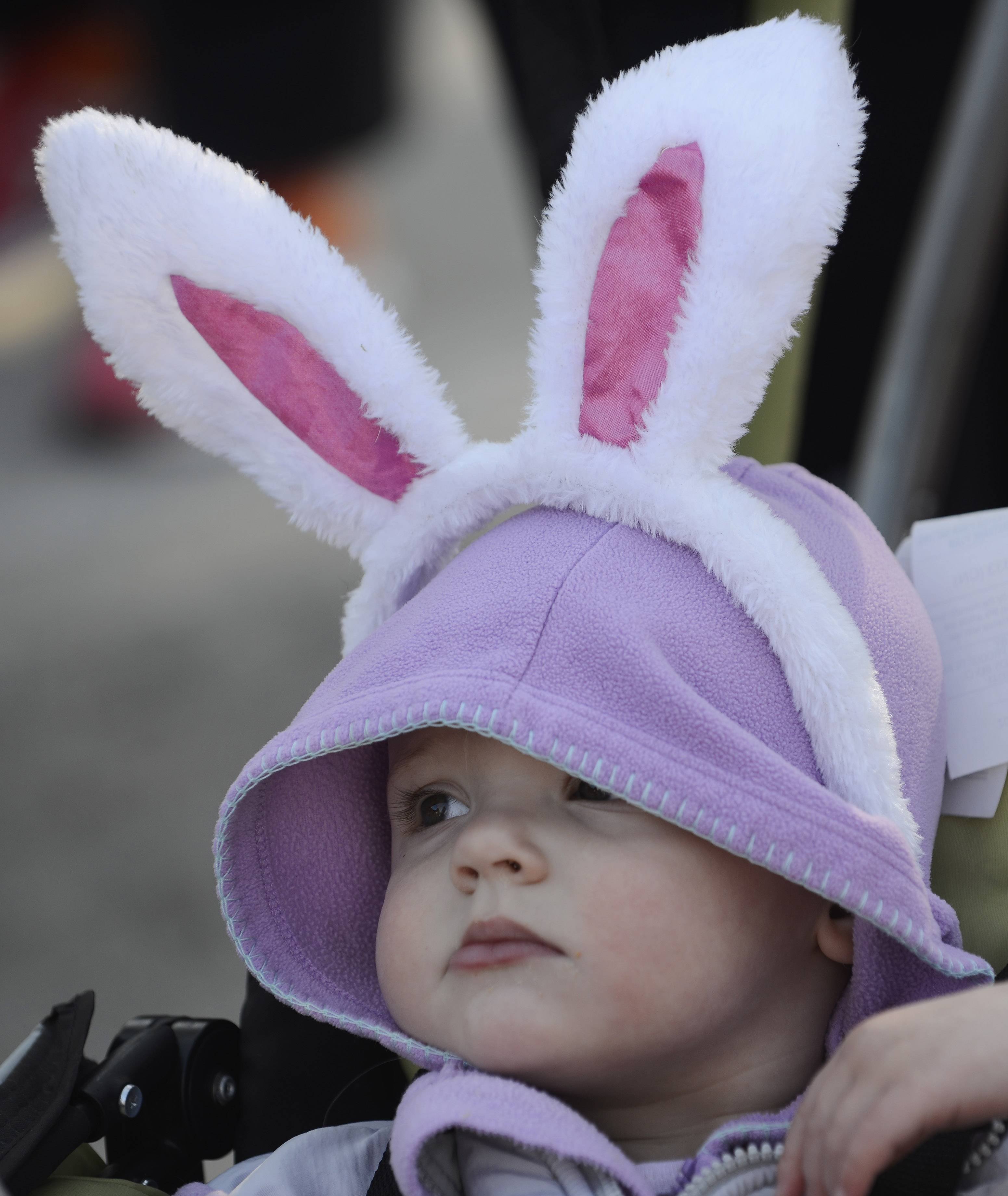 Claire Waggoner, age 18 months, of Wauconda is ready for the third annual Bunny Hop run and walk in Wauconda Saturday.