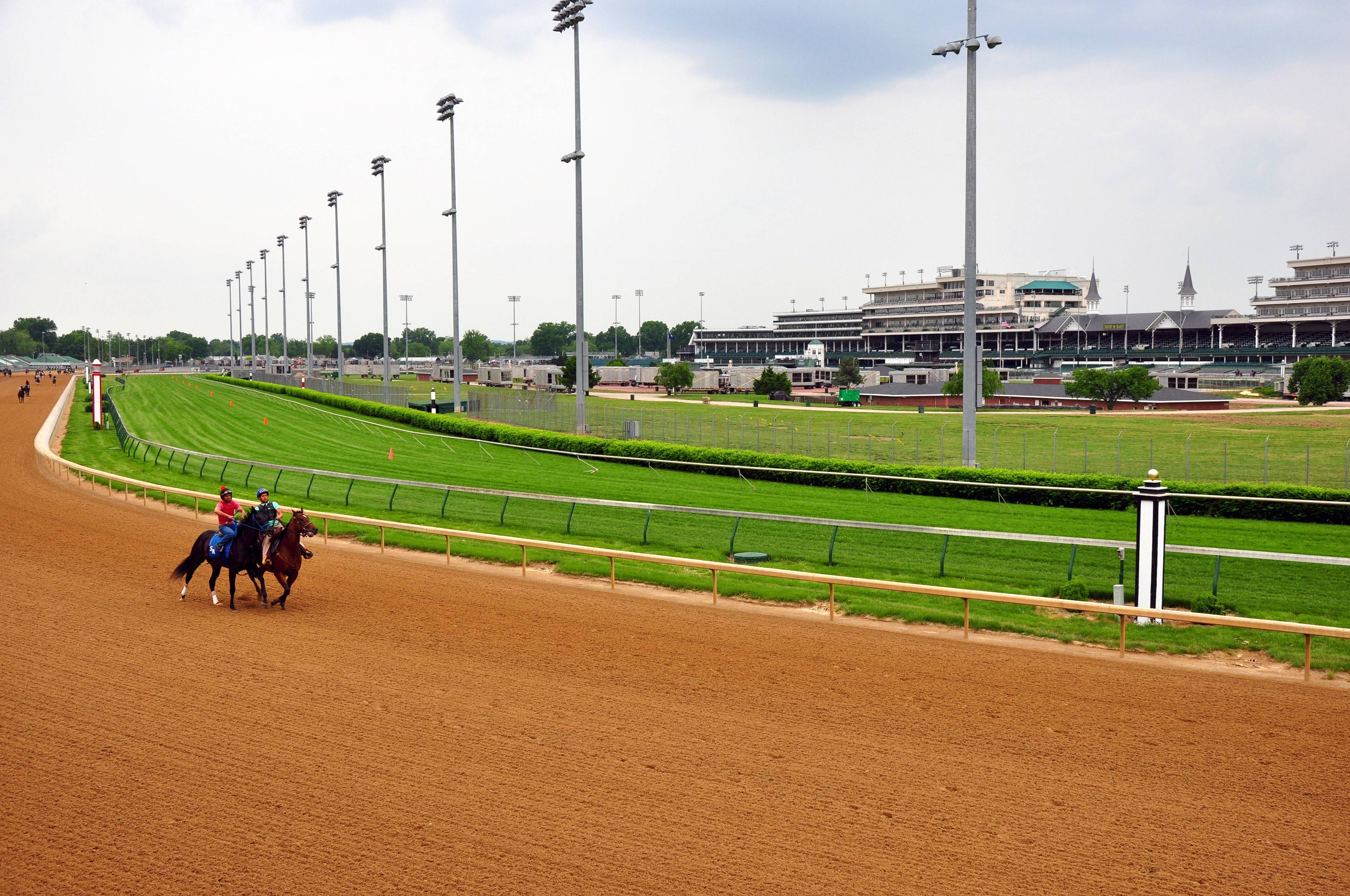 Visitors on the Barn and Backside tour at Churchill Downs may see horses warming up on the track if they choose an early morning tour.