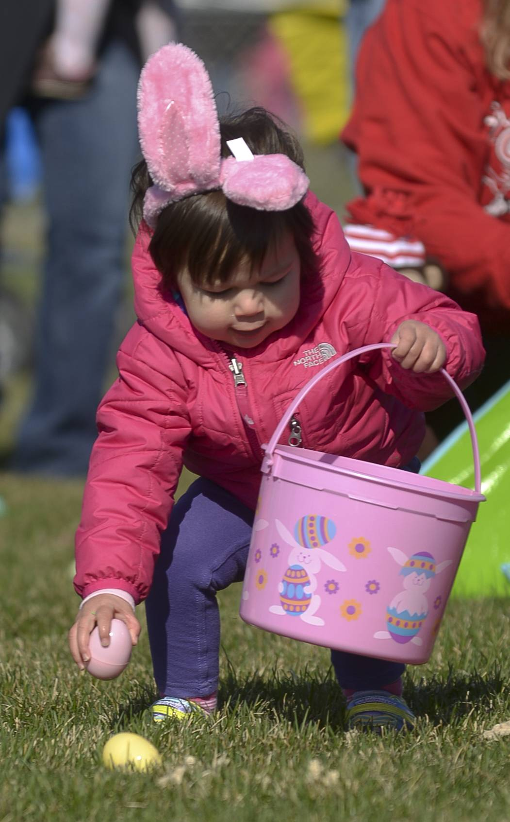 With bunny ears in place, two year old Alexis Berndl, of Bolingbrook, gathers up Easter Eggs at the 29th annual Jaycees Egg Hunt held at the Frontier Sports Complex in Naperville.