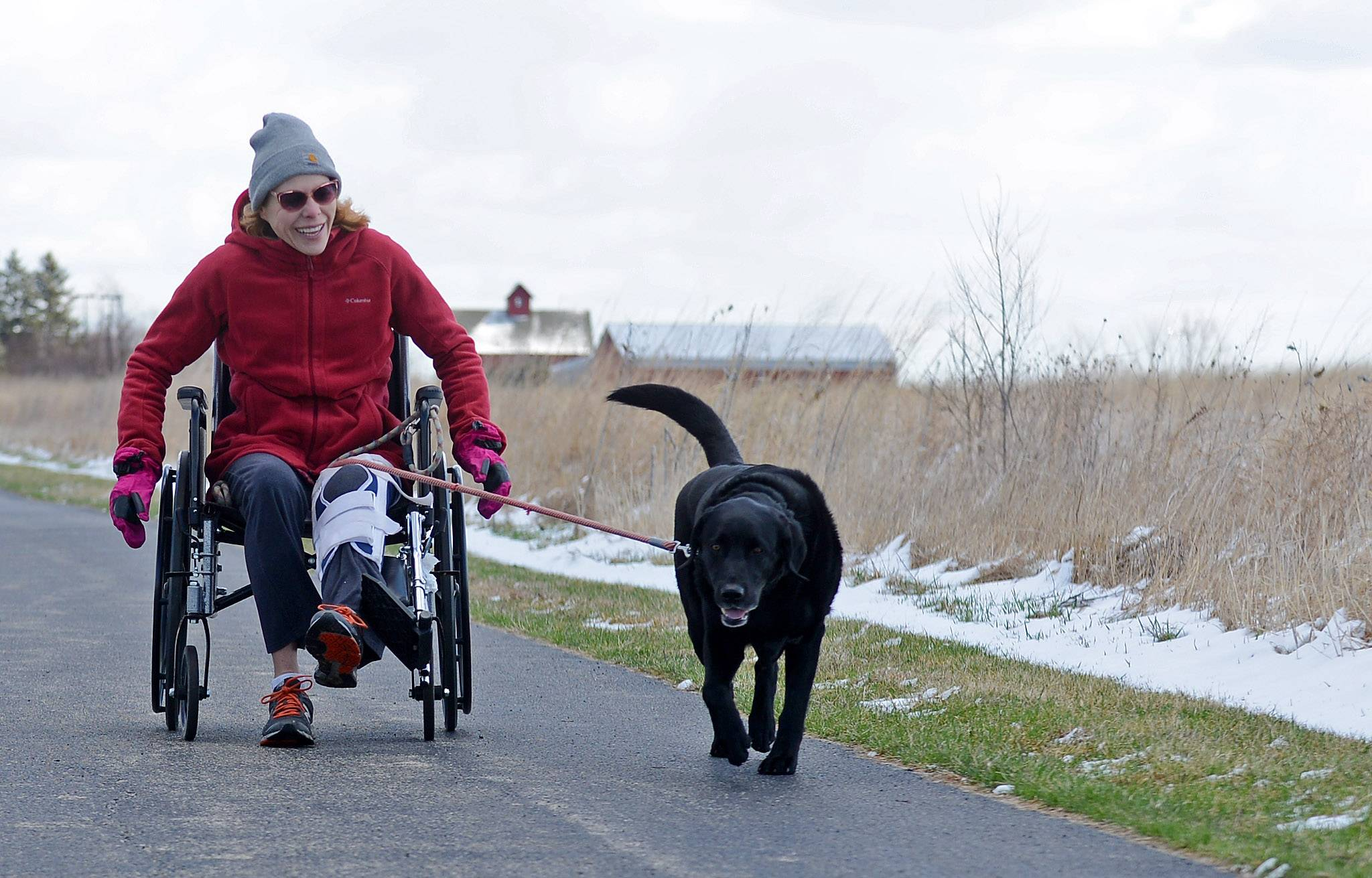 "Janice Lamberty, of Yorkville, ""walks"" her dog August, or more accurately he takes her for a ride, near Peck Farm Park in Geneva Tuesday. Lamberty had a doctor's appointment in Geneva for her broken leg and also works at the nearby Trader Joe's in Batavia. ""I walked him every day before this and I figured I'm not going to stop for 6 weeks just because I broke my leg, so I got a wheelchair,"" she said. ""He's been so good you'd think he's been trained for this,"" she said."