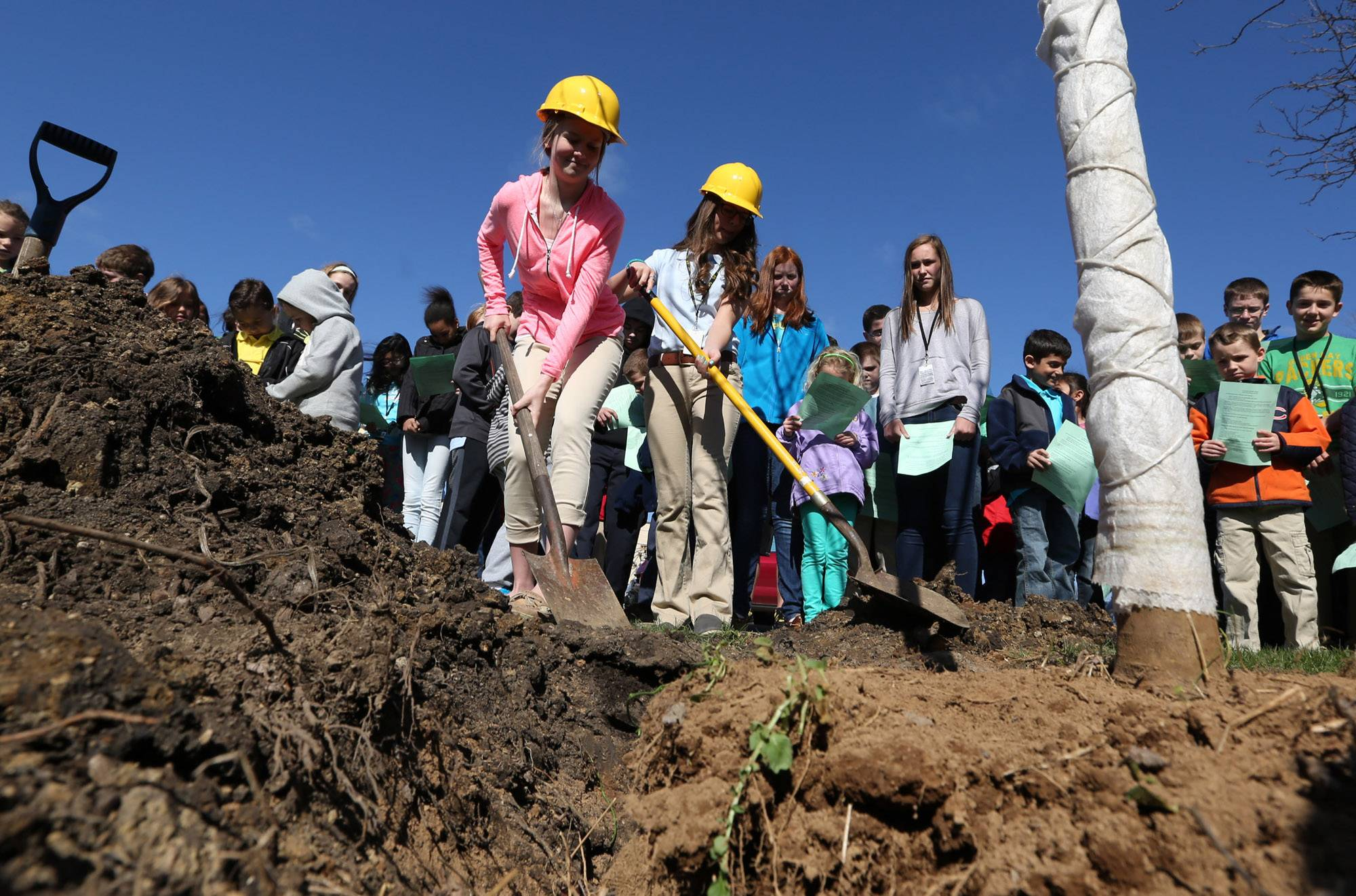 St. Joseph Catholic School eight-graders Kathleen Graham, left, and Bridget Horvath shovel dirt onto an autumn sugar maple tree during a tree planting ceremony Tuesday at the Libertyville school. All 400 students from the school attended the ceremony.