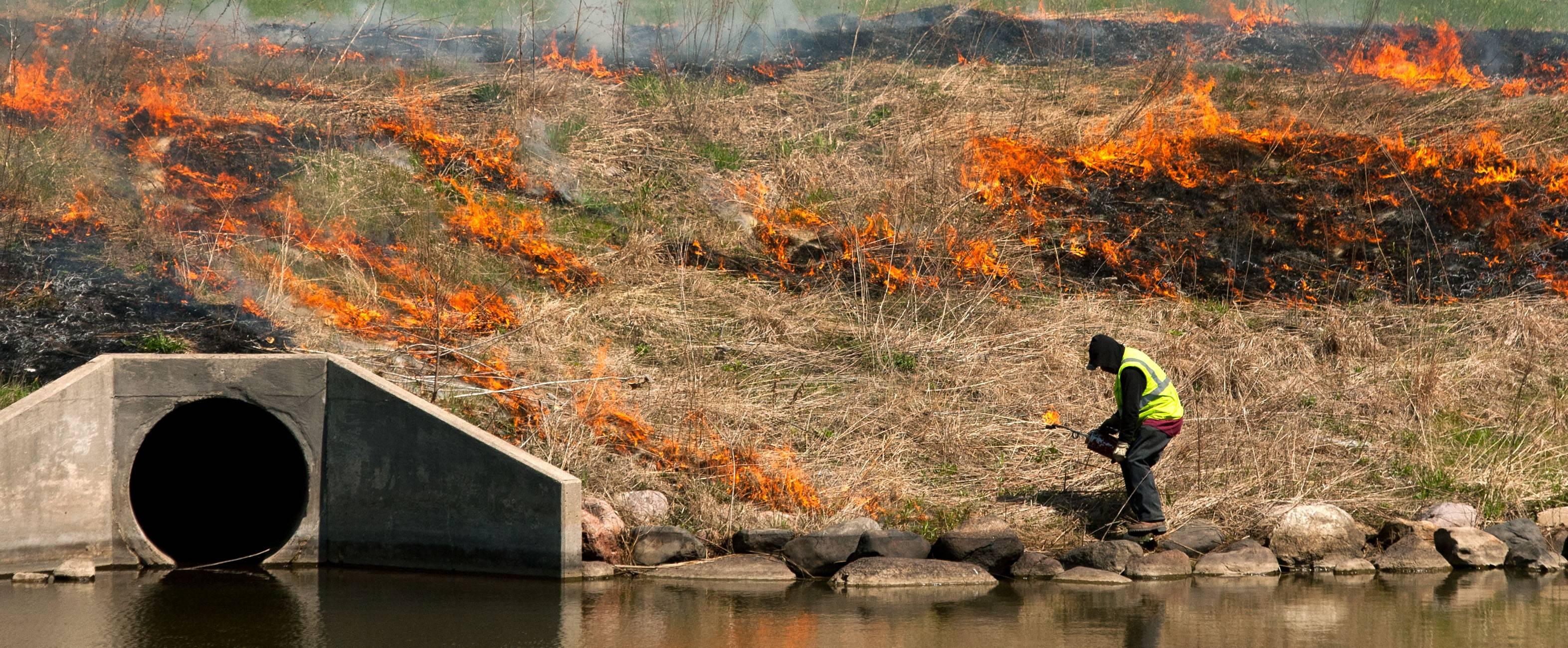 Crews conduct a controlled burn Wednesday near the southeast corner of Naperville and Warrenville roads in Lisle. Salvador Flores of McGinty Brothers of Wauconda was one of those who kept the fire — designed to help native prairie plants — in check.